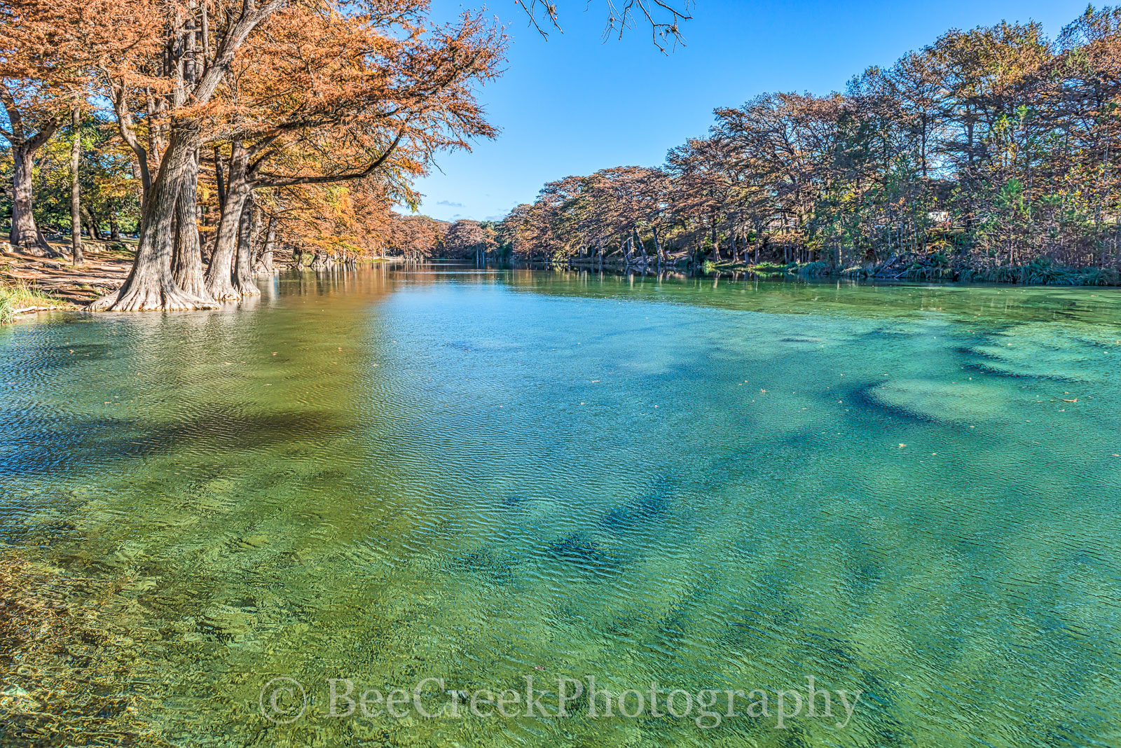 Frio River, Garner State Park, blue green waters, blue water, clear water, colorful, fall, fall cypress trees, landscape, landscapes, rural landscape, texas, texas landscape, photo