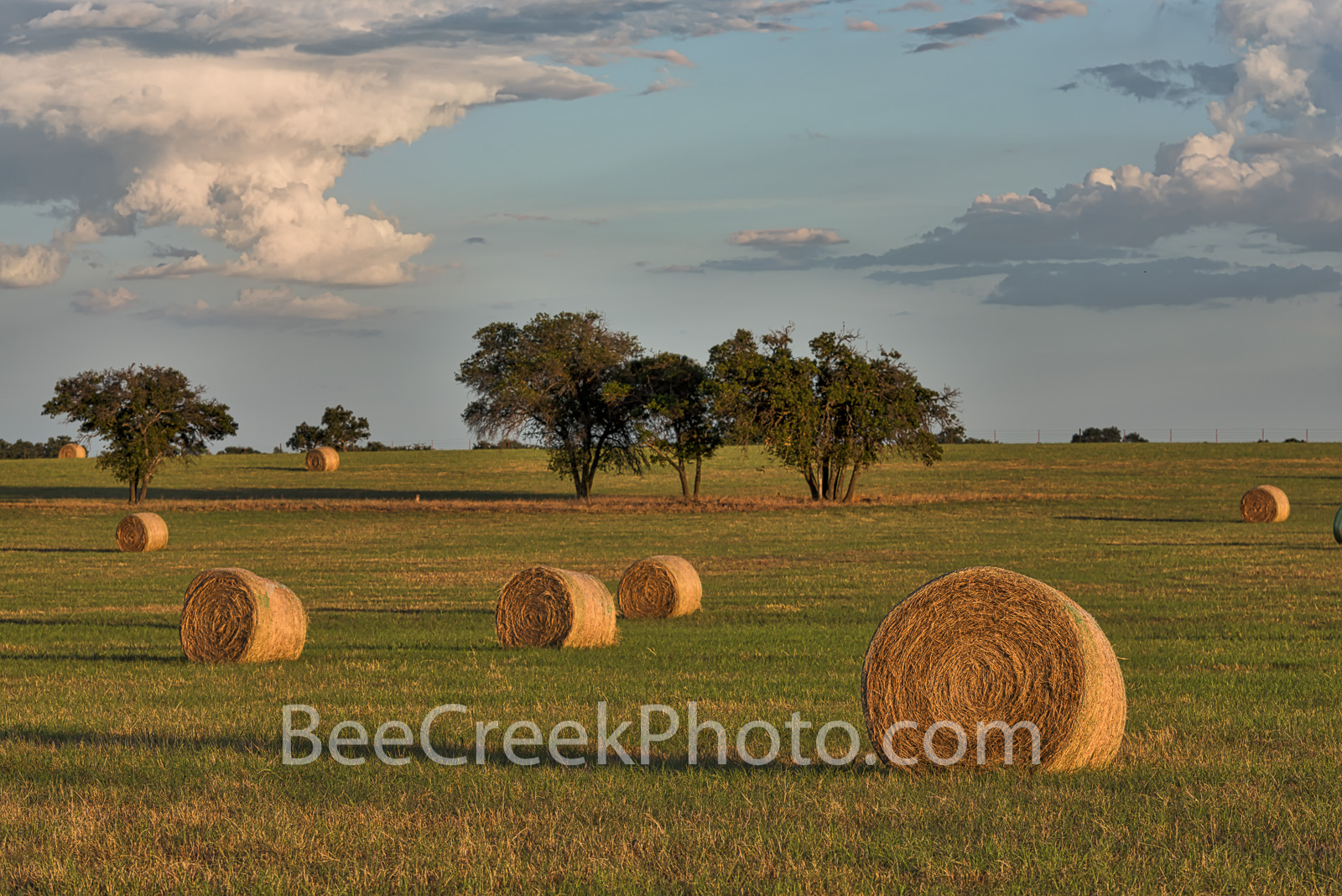 Haybales, hay, bales, Texas Hill Country, landscape, grasses, round bales, feed, horses, cows, goats, sheep, sunset, clouds, evening, farmer, field, llano, Texas, golden, cloud, , photo
