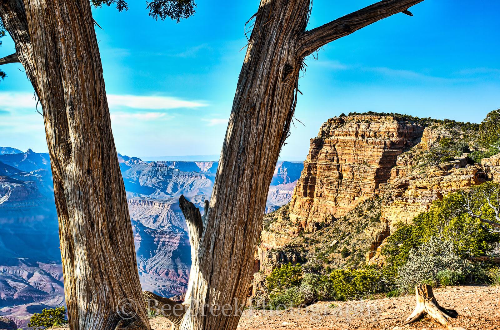 Gramd Canyon Vistas -Canyon Vistas as far as the eye can see. The Grand canyon park offer some spectacular views.