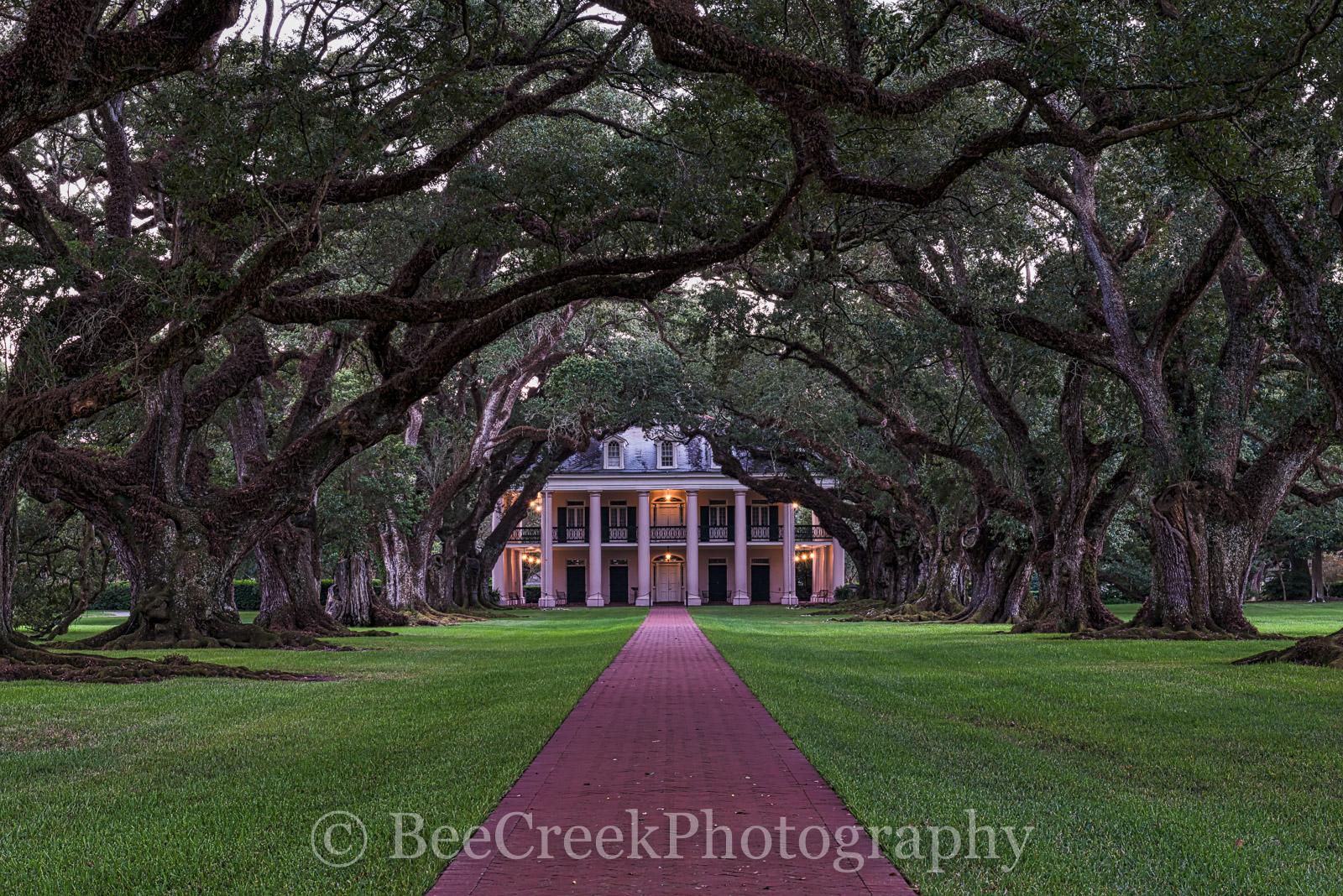 Lousiana, National Historic Landmark, Oak Alley, Sunrise, big house, branches, mansion, mississippi, oak trees, plantation, sidewalk, slaves, sugar cane, photo
