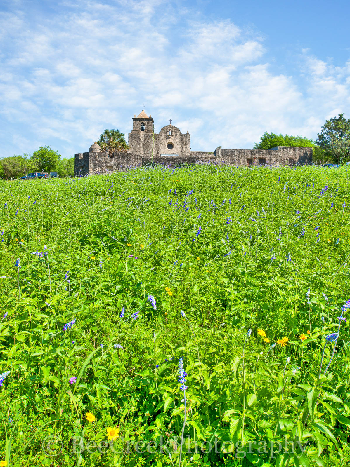 Presidio La Bahi, blue savia, catholic church, fort, historic, mission, missions, spanish, spring, springtime, wildflowers, vertical, landscape, , photo