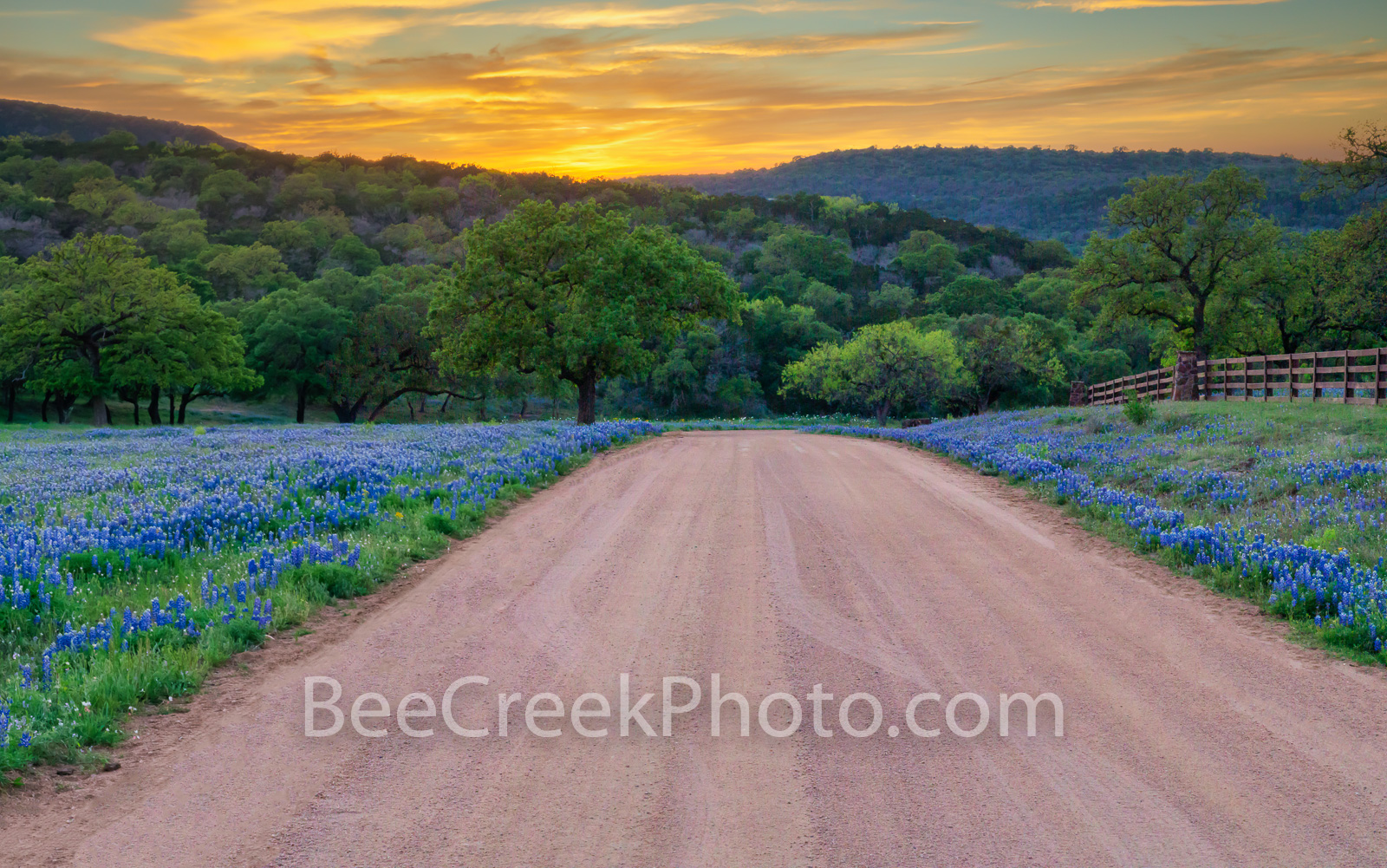 Road Less Traveled Sunset - We love this county dirt road in the Texas Hill country in spring with the bluebonnets lining the...
