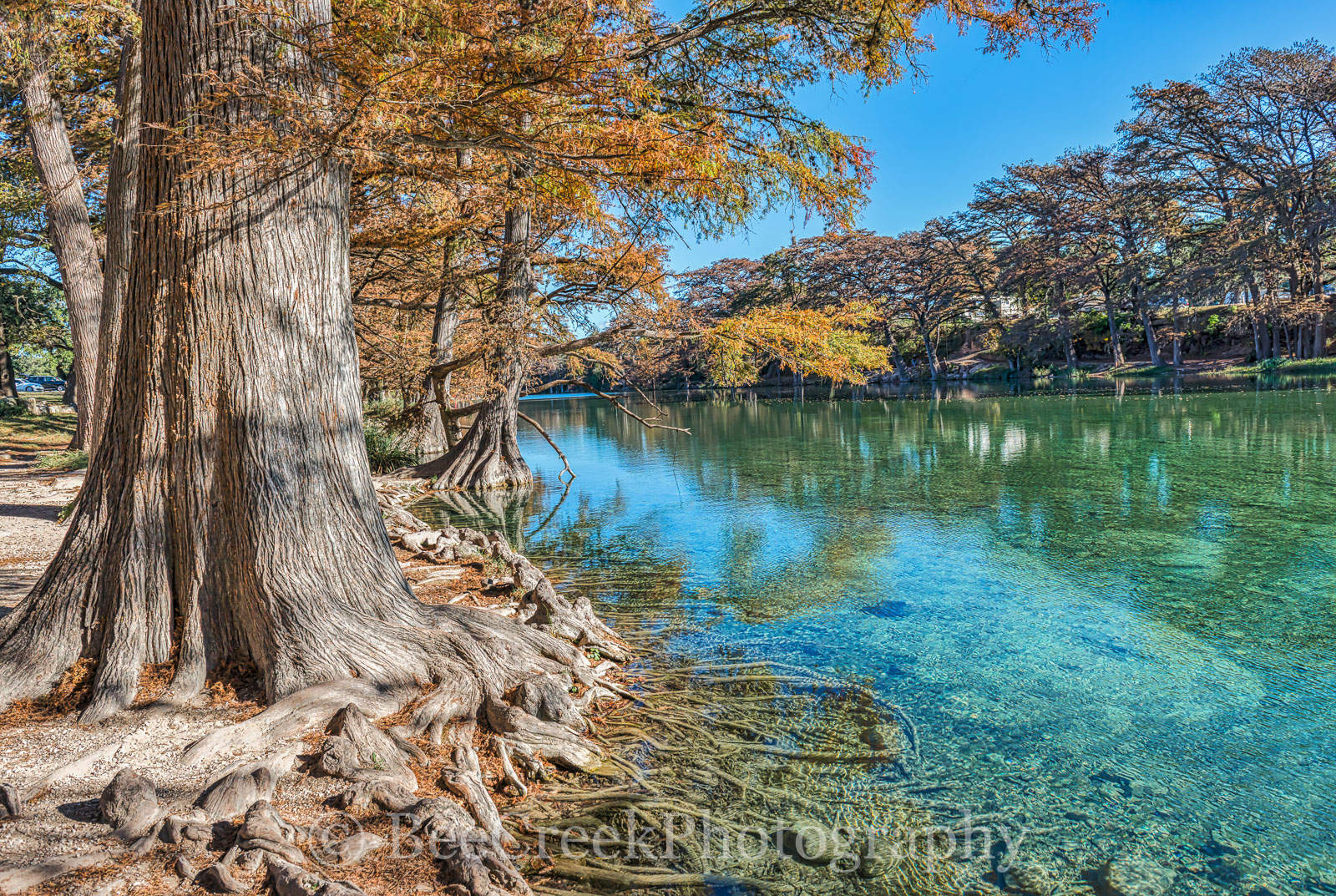 America, American, Frio River, Garner State Park, Old Baldy, blue green waters, blue water, clear water, colorful, cypress trees, fall, fall landscapes, images of Texas, landscape, landscapes, photos