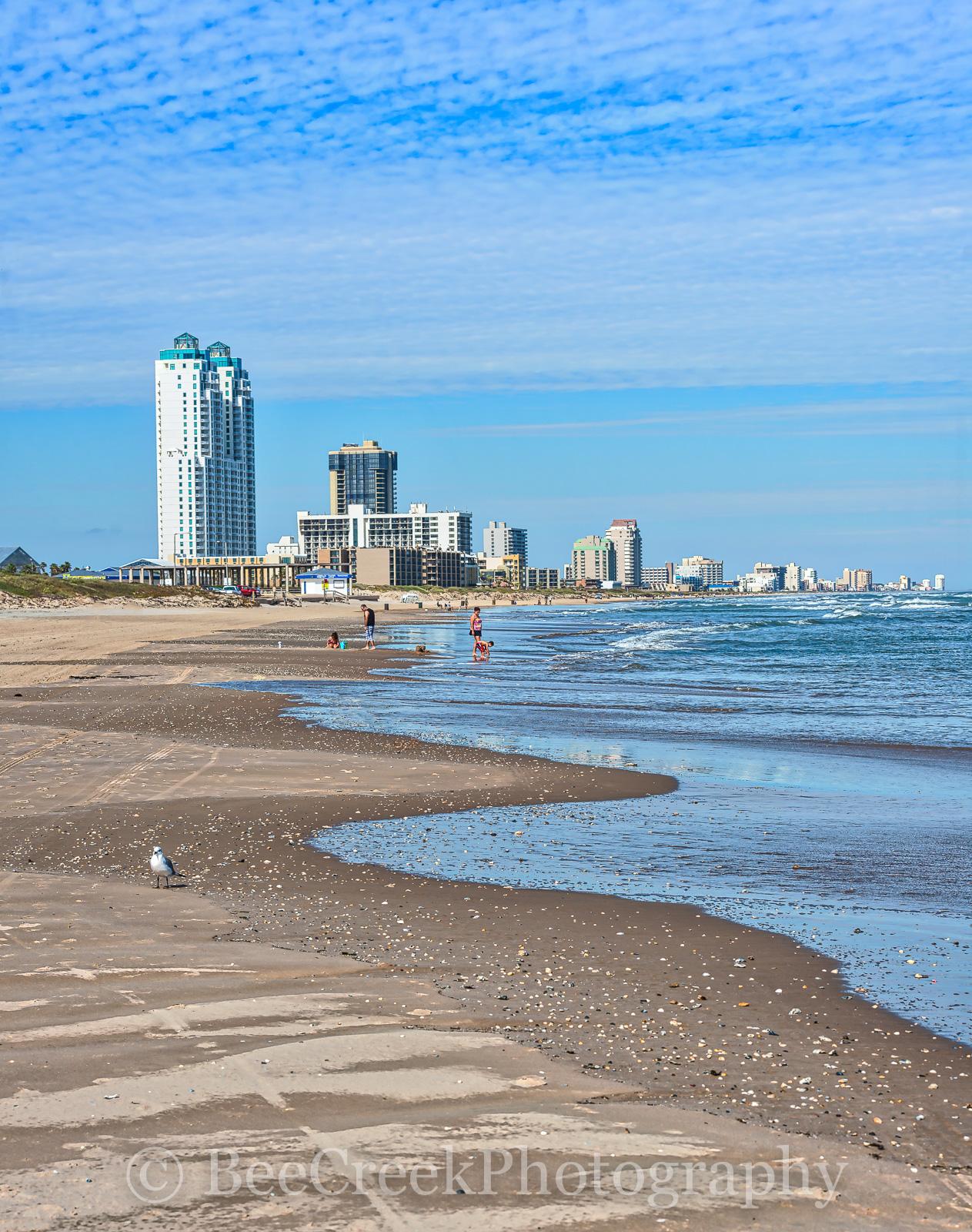 South Padre Island Texas Beach Coastal Dunes Hotels Landscape
