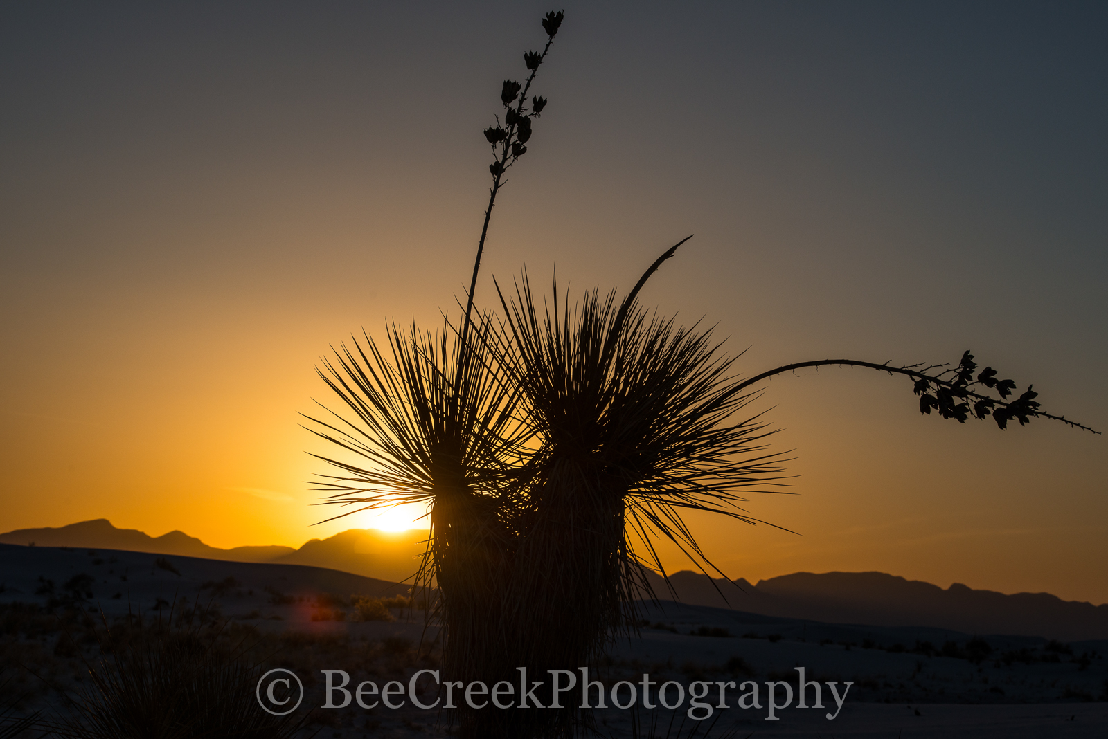 Sunset in White Sands- The wonderful landscape in White Sands National Monument was beautiful. This wonderful area...