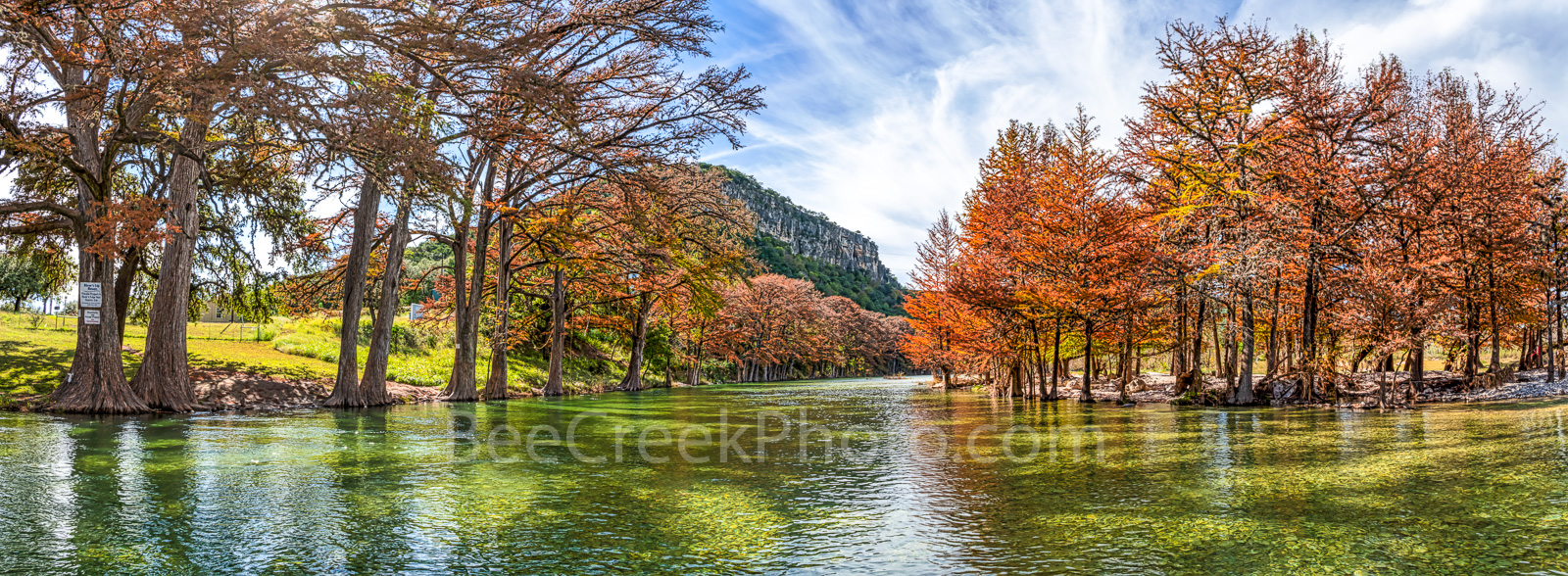 Fall Foliage, fall, cypress branches, cypress tree, maples, fall, autumn, frio river, old baldy, colors, Garner State Park, panorama, panoramic, Texas, landscape, texas hill country, canvas, prints, T