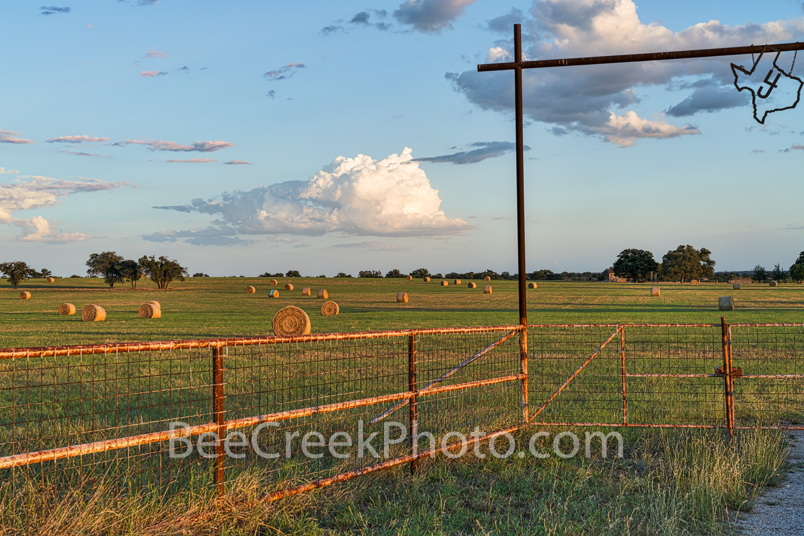 Haybales, haybales, Texas Hill Country, landscape, grasses, round bales, feed, horses, cows, goats, sheep, sunset, clouds, evening, farmer, field, llano, Texas, gate,  , photo