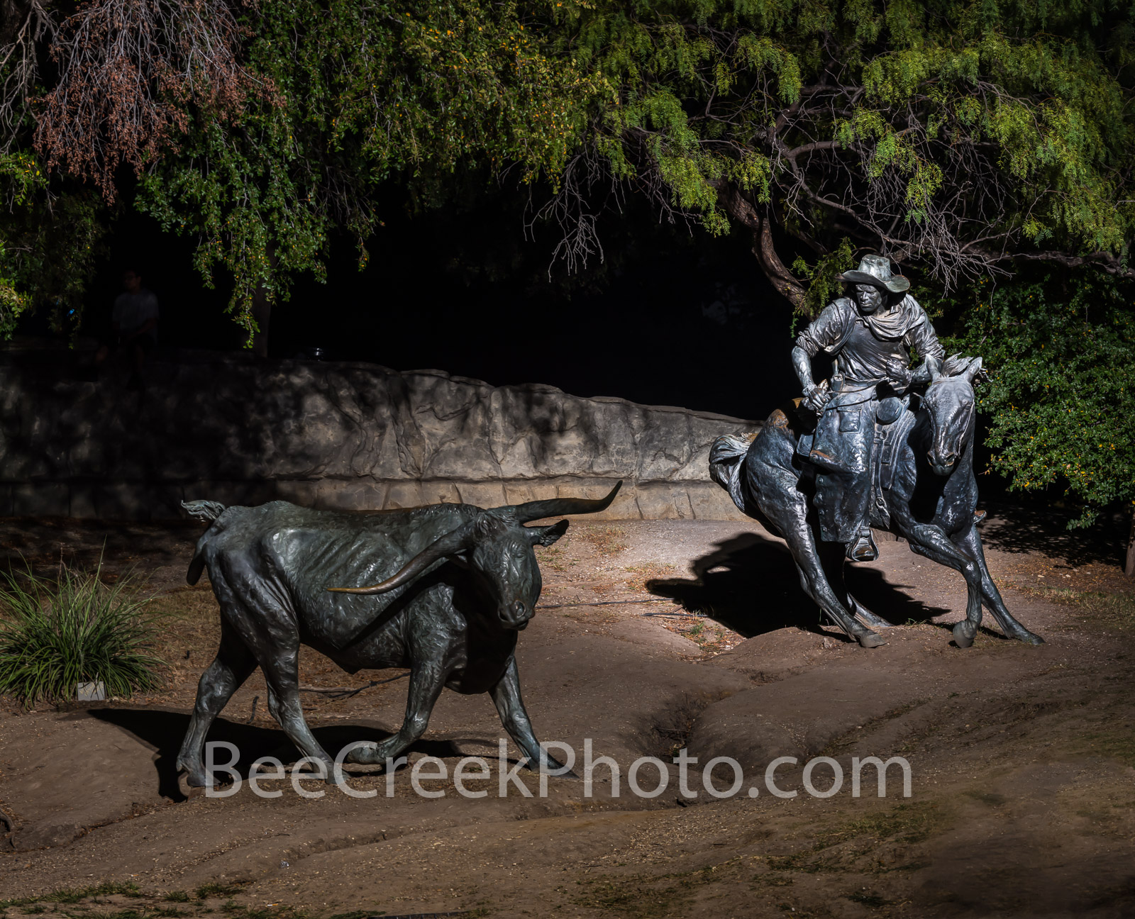 The Stragler - This is an image from the Dallas Pioneer Plaza Sculpture in downtown Dallas of a lone steer and a trail...