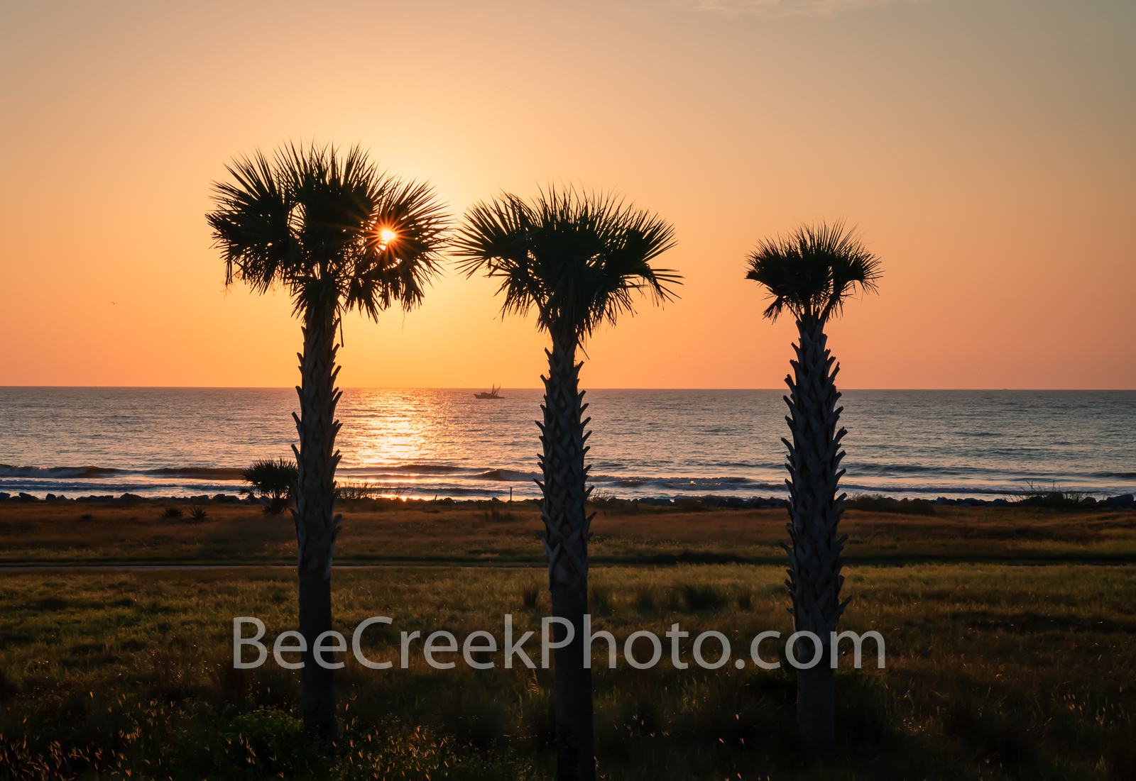 Jekyll island, palm trees, palm, glow, sunrise, orange, pinks, yellows, alantic ocean, shrimper, shrimp boat, Alantic ocean, jekyll beach, ocean, Golden Isles barrier island, beaches, Georgia, souther, photo