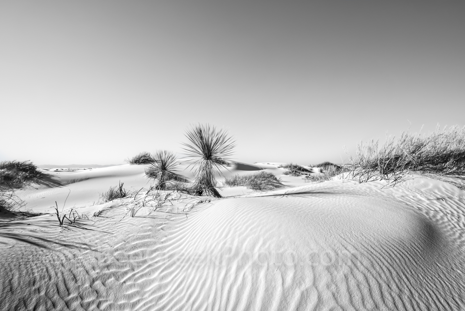 White Sands Dunes, New Mexico, Alamagorda nm, sand dunes, desert landscape, image of new mexico, pictures of sand dunes, southwestern, us, yuccas, soft, white, gypsum, blue skys, landscape, scenic, de, photo