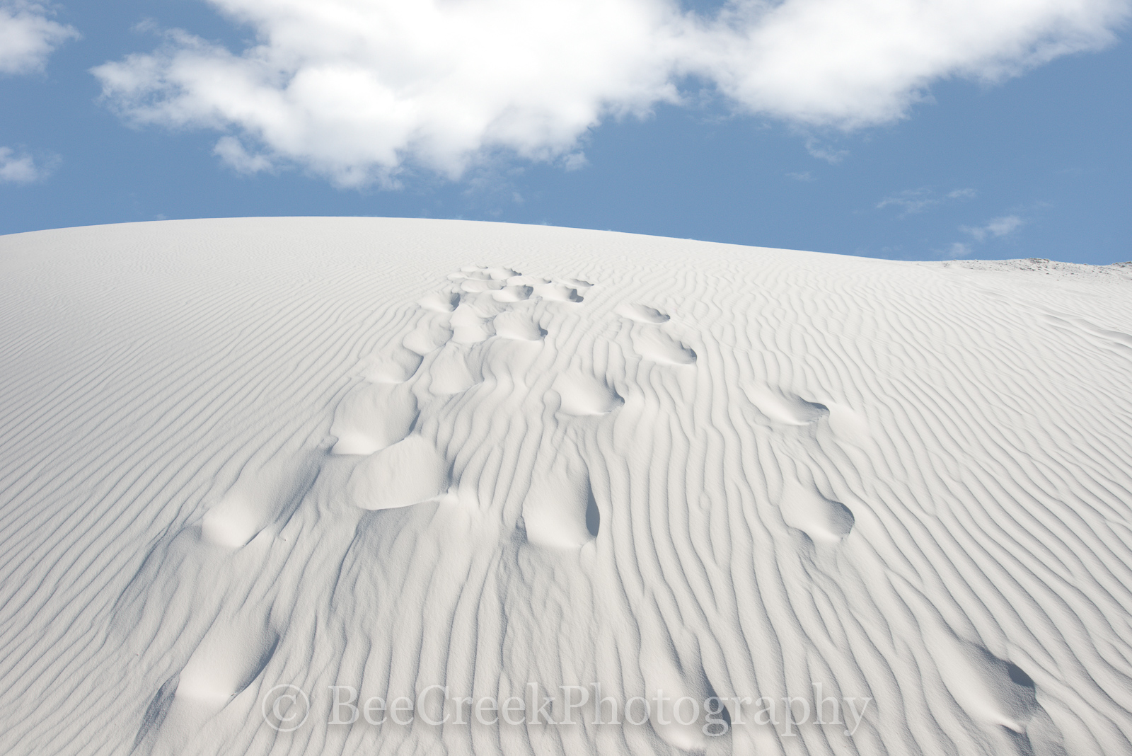 White Sands, Alamagorda nm, New Mexico, New Mexico Parks, White Sand National Monument, beautiful photos of white sands, dunes, flow of sand, foot steps in the sands, gypsum, images of White Sands, ma