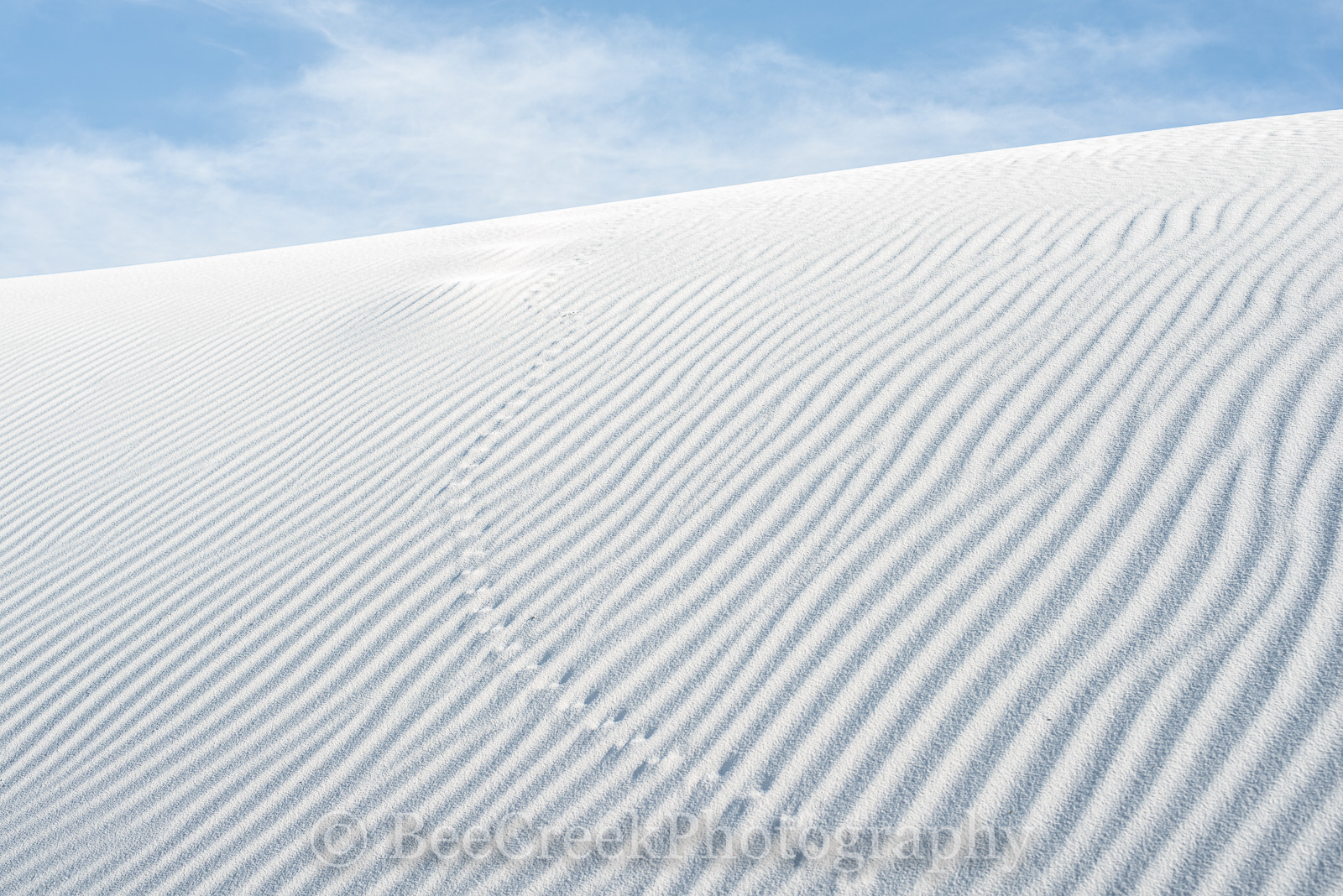 White Sands, landscapes, Alamagorda nm, Animal tracks in the sand dune, New Mexico, New Mexico Parks, White Sand National Monument, beautiful photos of white sands, dunes, flow of sand, gypsum, images, photo