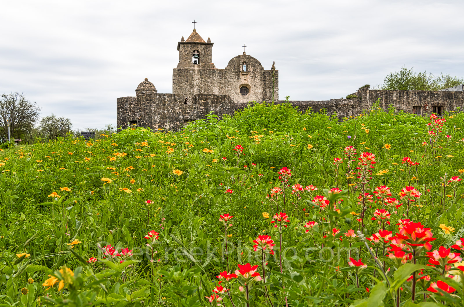 Wildflowers at Presidio Goliad - This is another capture of Presidio La Bahí in Goliad on a spring day with texas wildflowers...