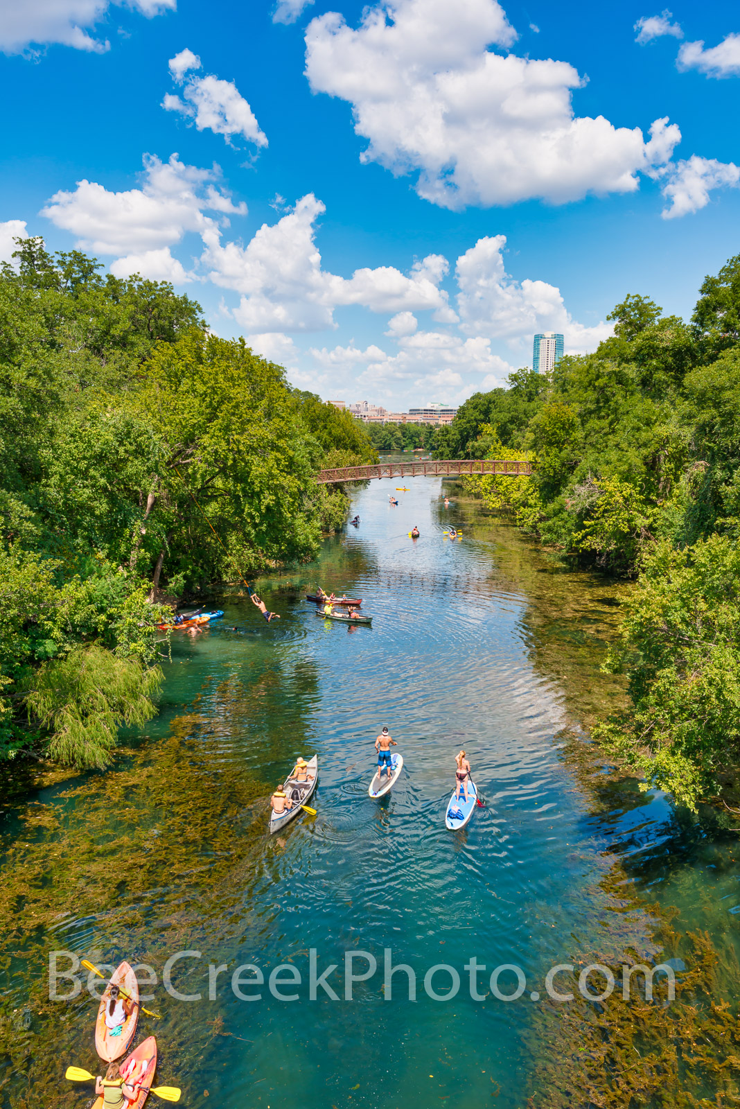 Austin Barton Springs Vertical - Austin paddle boading and canoeing on Barton Springs with puffy clouds and blue skies and clear...