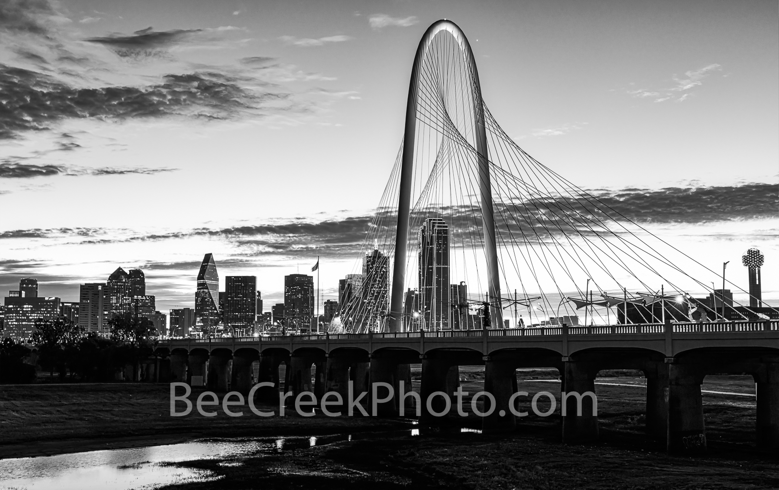 Dallas, black and white, BW, sunrise, Margaret Hunt Hill Bridge, Dallas skyline, Dallas bw, landmark, iconic, bridge, downtown dallas, city,  dallastx,  city of dallas, dallas texas, , photo