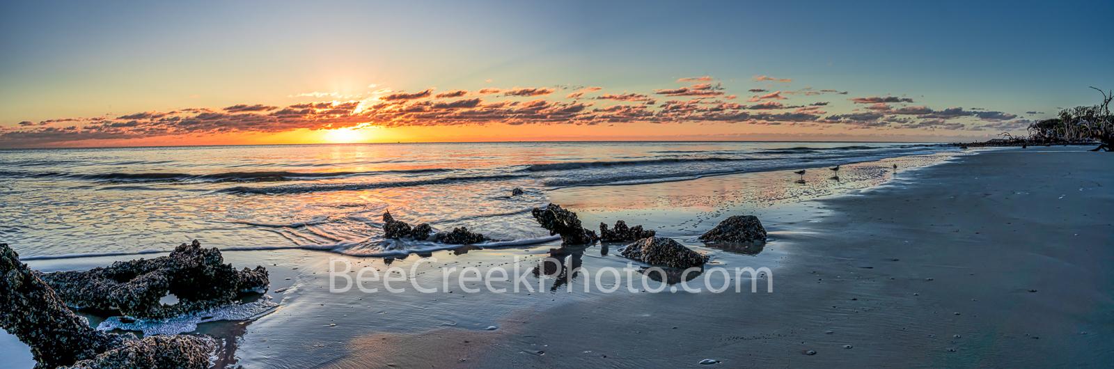 Jekyll island, Alantic Ocean, beach, sandy beach, beach, sea and sand, alantic coast, seascape, driftwood, beach sunrise, coastal, barnicals, pano, panorama, beachscape, seascape, , photo