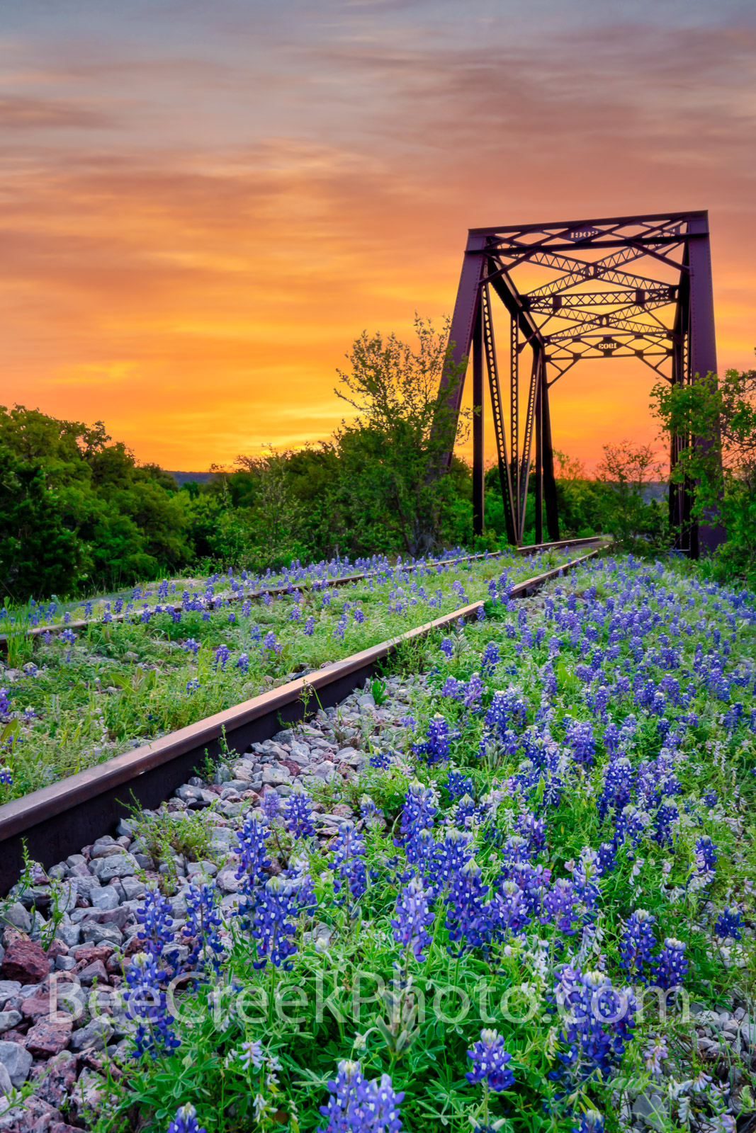 bluebonnet, texas bluebonnets, railroad tracks, tressel,  sunrise, texas hill country, bluebonnets, colorful sky, orange, orange sky, hill country, train tracks, sunset, vertical, photo