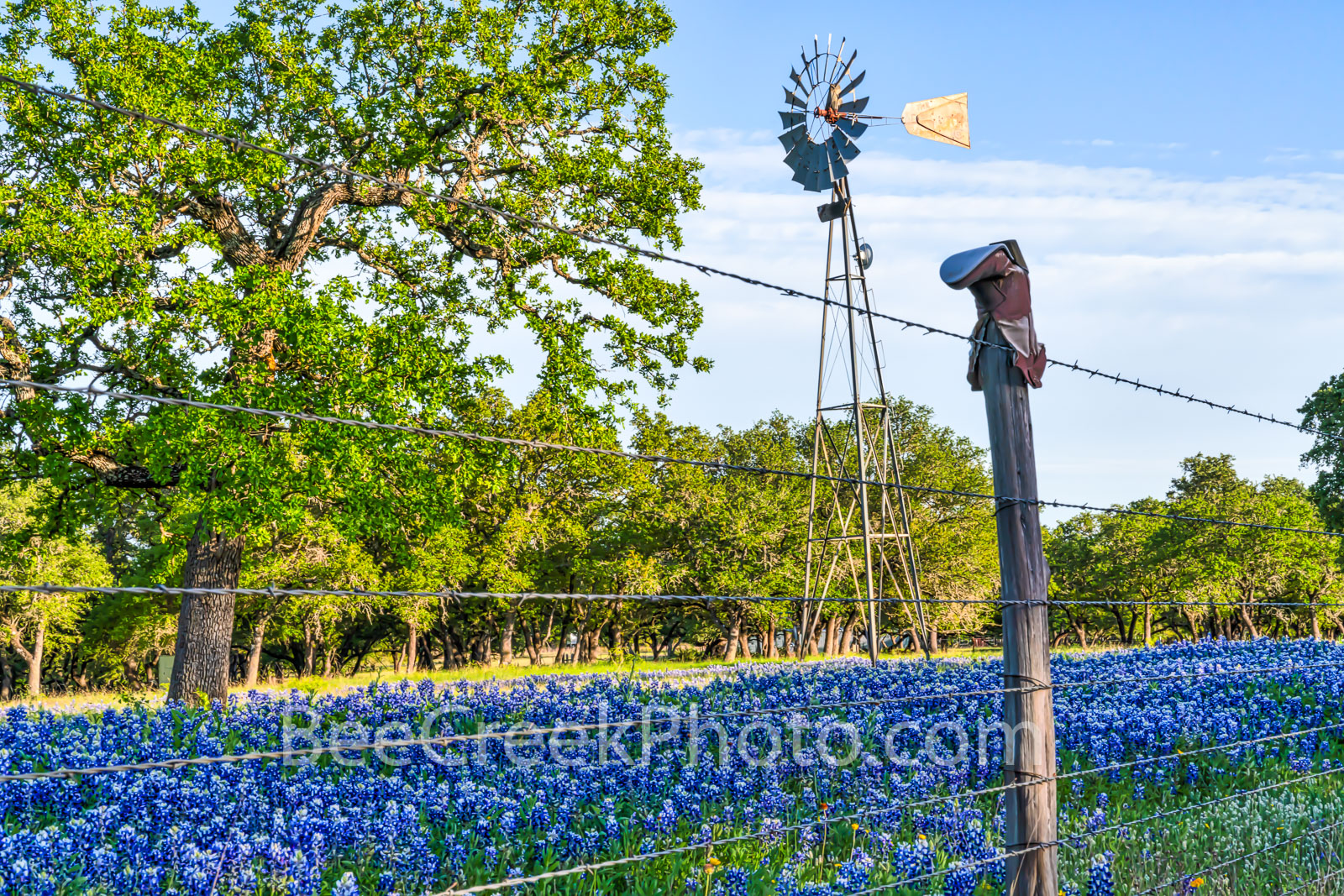 texas windmill, bluebonnets, cowboy boot, boot fence, texas bluebonnets, texas wildflowers, blue bonnets, texas scenery, texas landscape, windmills in texas, texas wildflower landscape, texas hill cou, photo