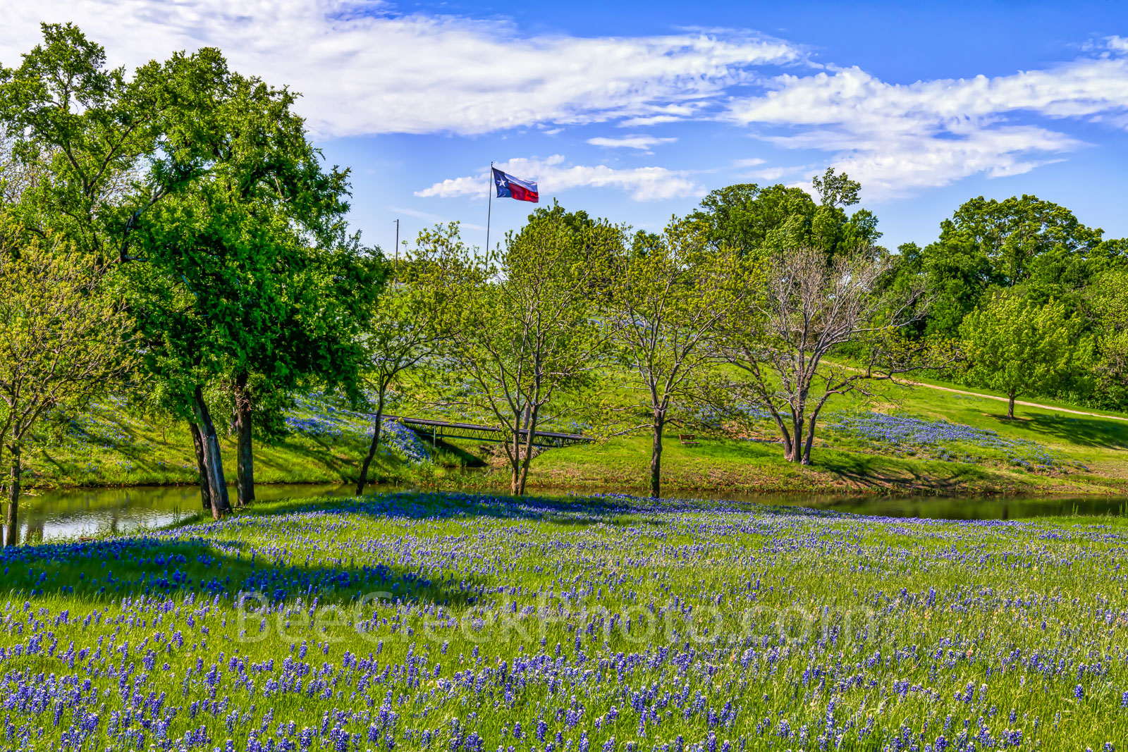 Texas bluebonnet landscape, bluebonnets, landscape, texas, bluebonnet trail, Ennis, wildflowers, wildflower, blue sky, creek, Texas flag, ranch, creek, pond, scene, rural texas landscape,, photo