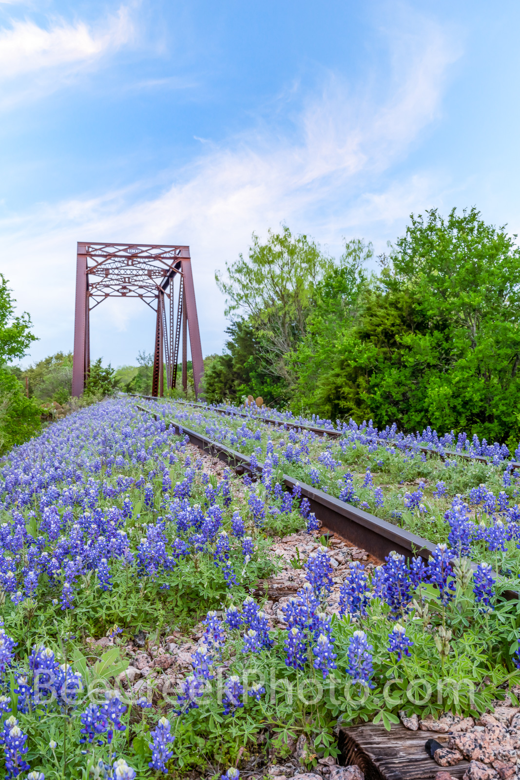 Bluebonnets Landscape on the Tracks Vertical - We capture this wonderful blue sky over the bluebonnets at the rail road track...