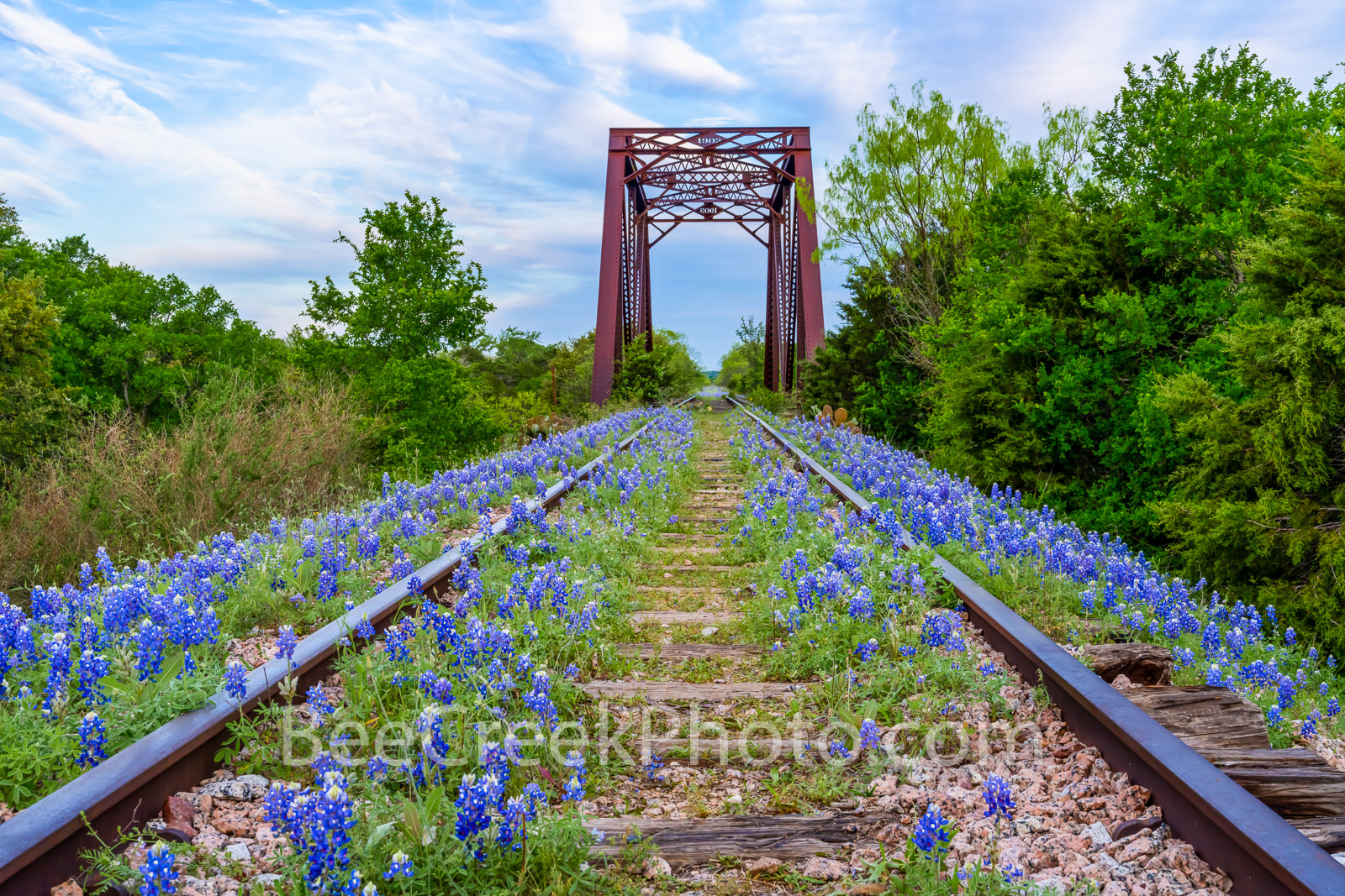 Bluebonnets Wildflowers Along the Track - This old abandoned rail road track with bluebonnets is something we have taken a few...