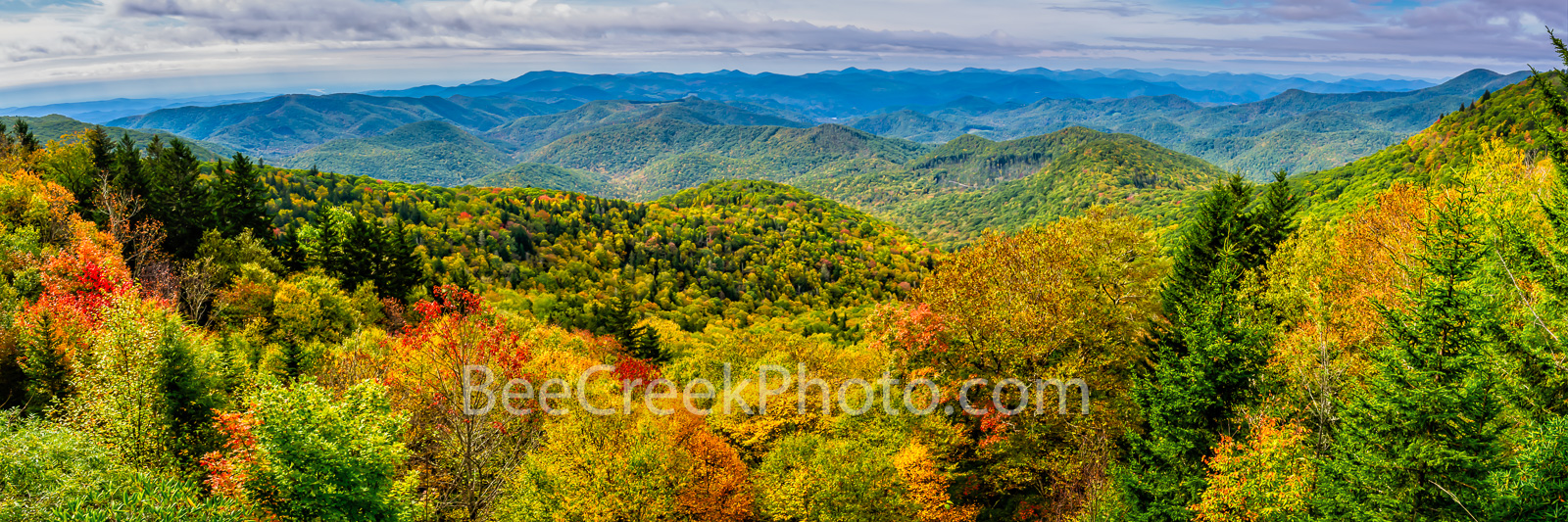Blueridge Parkway, Fall, autumn, fall, smoky mountains, hillsides, yellow, reds, oranges, forest, pano, panorama, mountains, north carolina, nc, pano, panorama, , photo