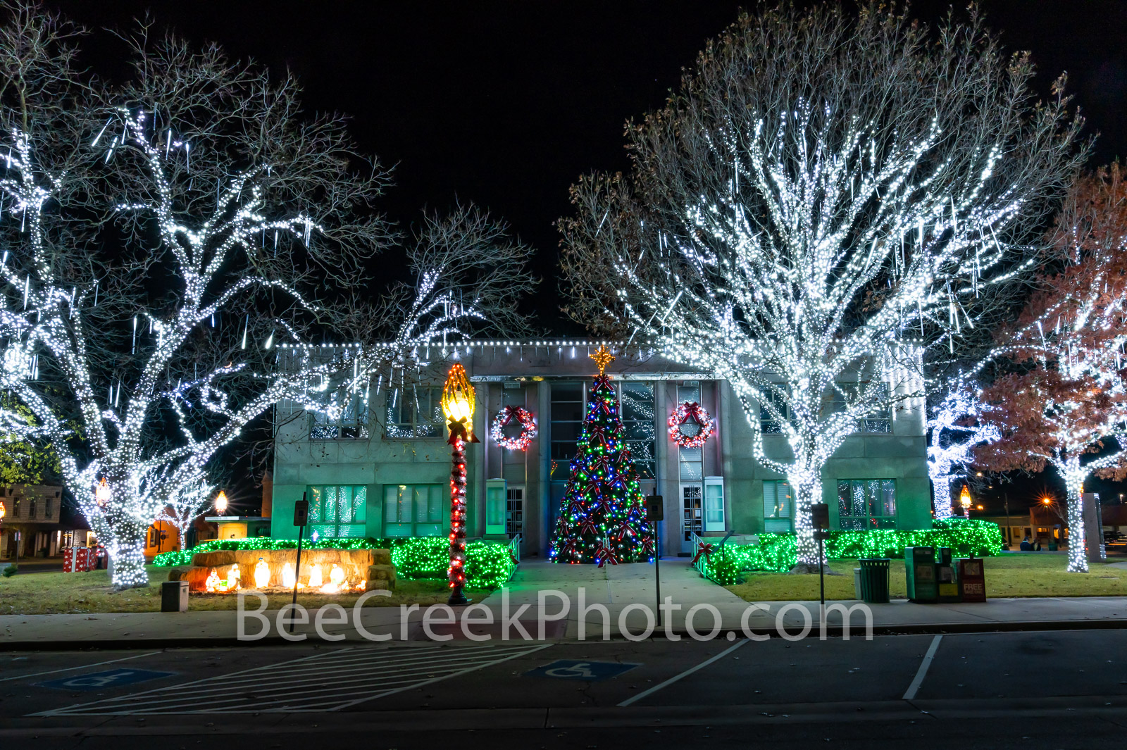 burnet, christmas, holiday, lights, trees with lights, christmas tree, nativity scene, manager scene, festive, rural christmas, rural, country, texas hill country, , photo