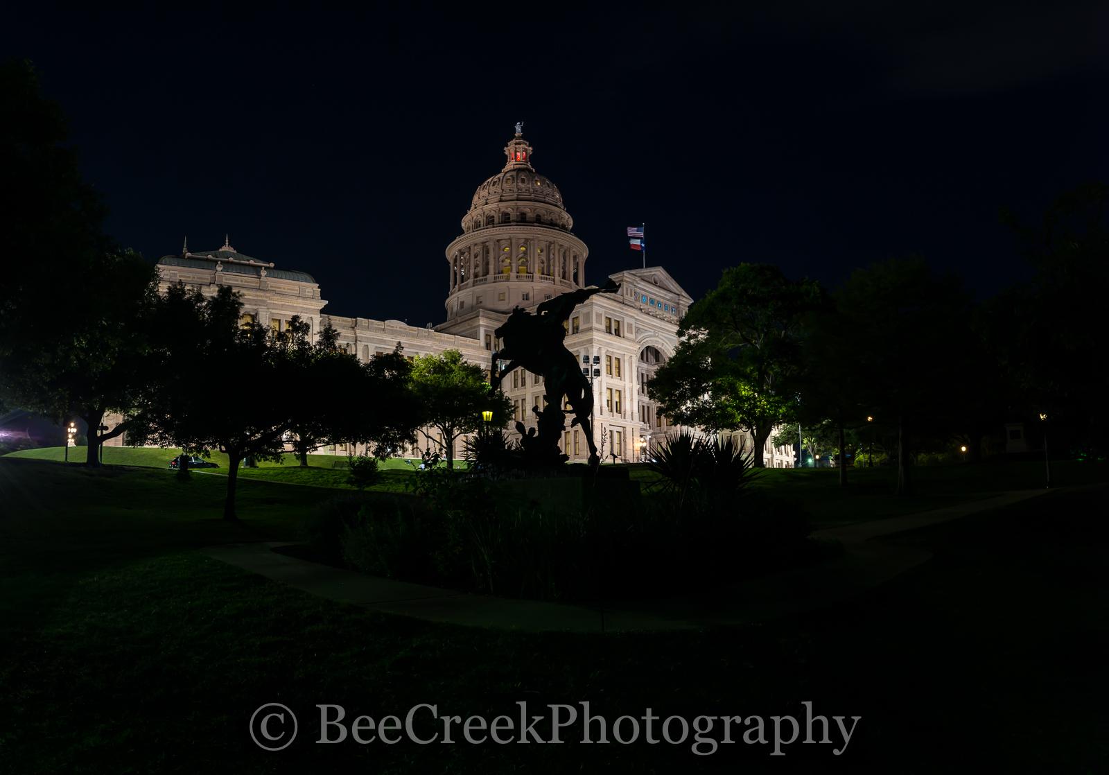 Austin, Texas Capital, Texas Capital, cowboy, horse, rider, pano, panorama, night,, photo