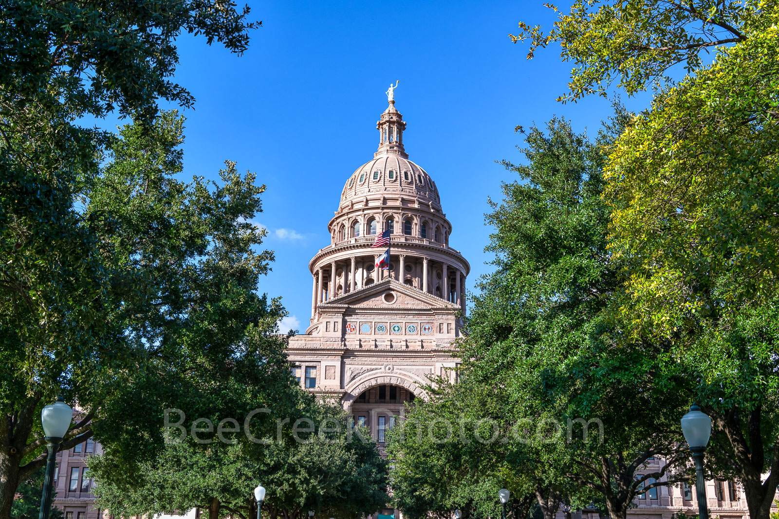 Capitol of Texas - The top of the Texas Capitol in downtown Austin through the trees from the South view. The Capitol of Texas...