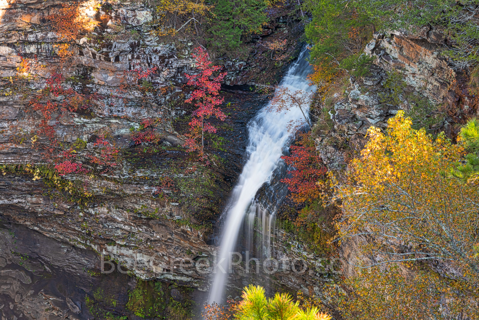 Cedar Fall, waterfall, cliff, red maples, pines, cedars, fall, autumn, flow, color, green, reds, close up, arkansas, jean petit, fall colors, , photo