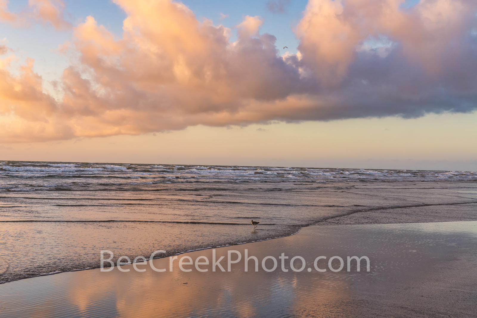 port aransas, beach, beach,  clouds, gulf of mexico, port a, sea, ocean, peach, pinks, orange, reflections, reflect, bird, beautiful, pastel, colors, colorful, seascape, beach scene, texas coast, coas, photo