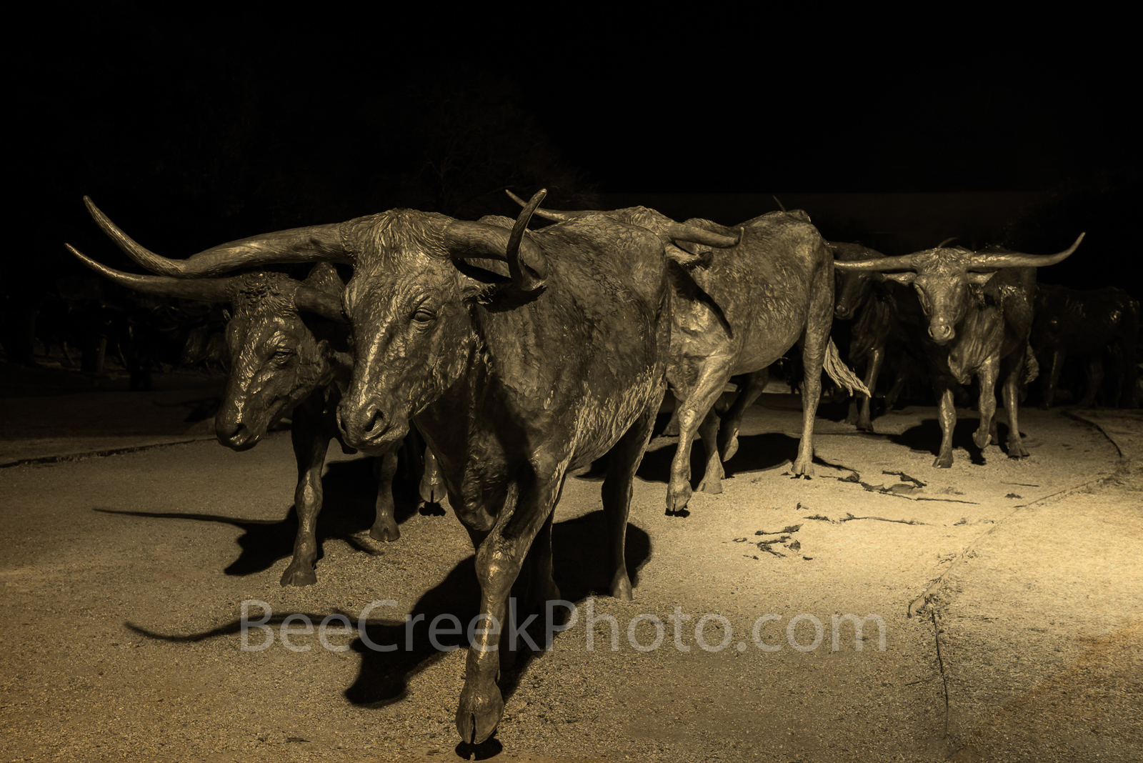Dallas, Pioneer Plaza, antique tone, downtown, city, cityscape, cityscapes, night, cattle, bronze, statues, park, longhorns, texas,, photo
