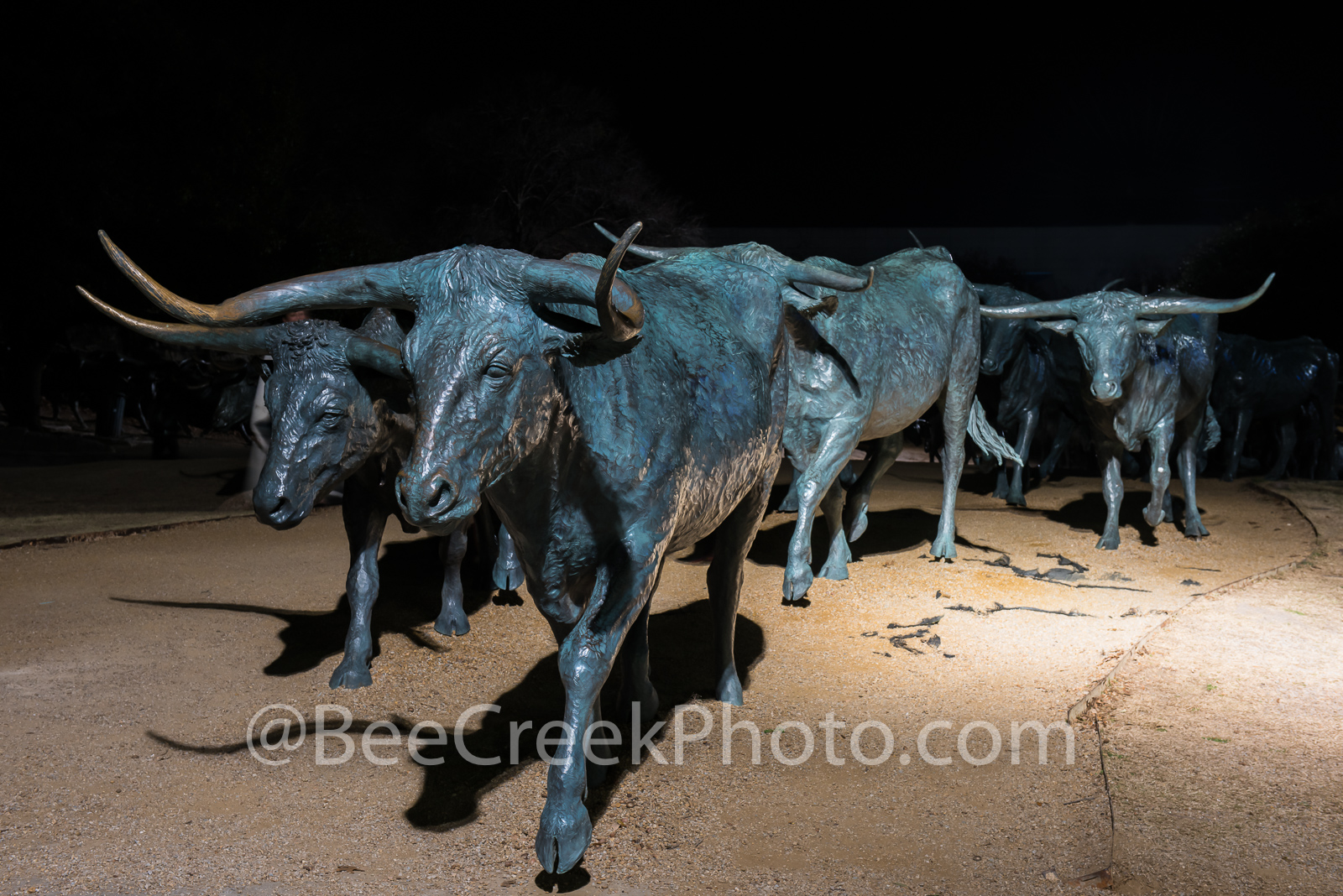 Dallas, Pioneer Plaza, bronze, cattle, city, cityscape, cityscapes, downtown, longhorn, night, park, statues, texas, night, , photo