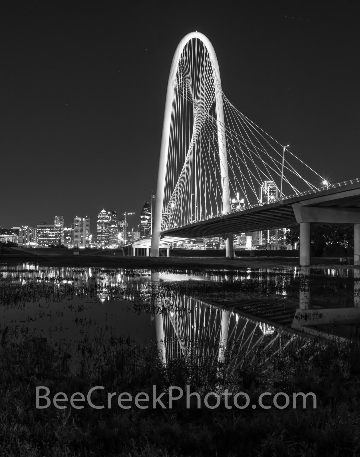 Dallas Margaret Hunt Hill Bridge, black and white, B W , downtown dallas, dallas skyline, trinity river, night, dfw, reflections, city of dallas, dfw, dallas fort worth, , photo