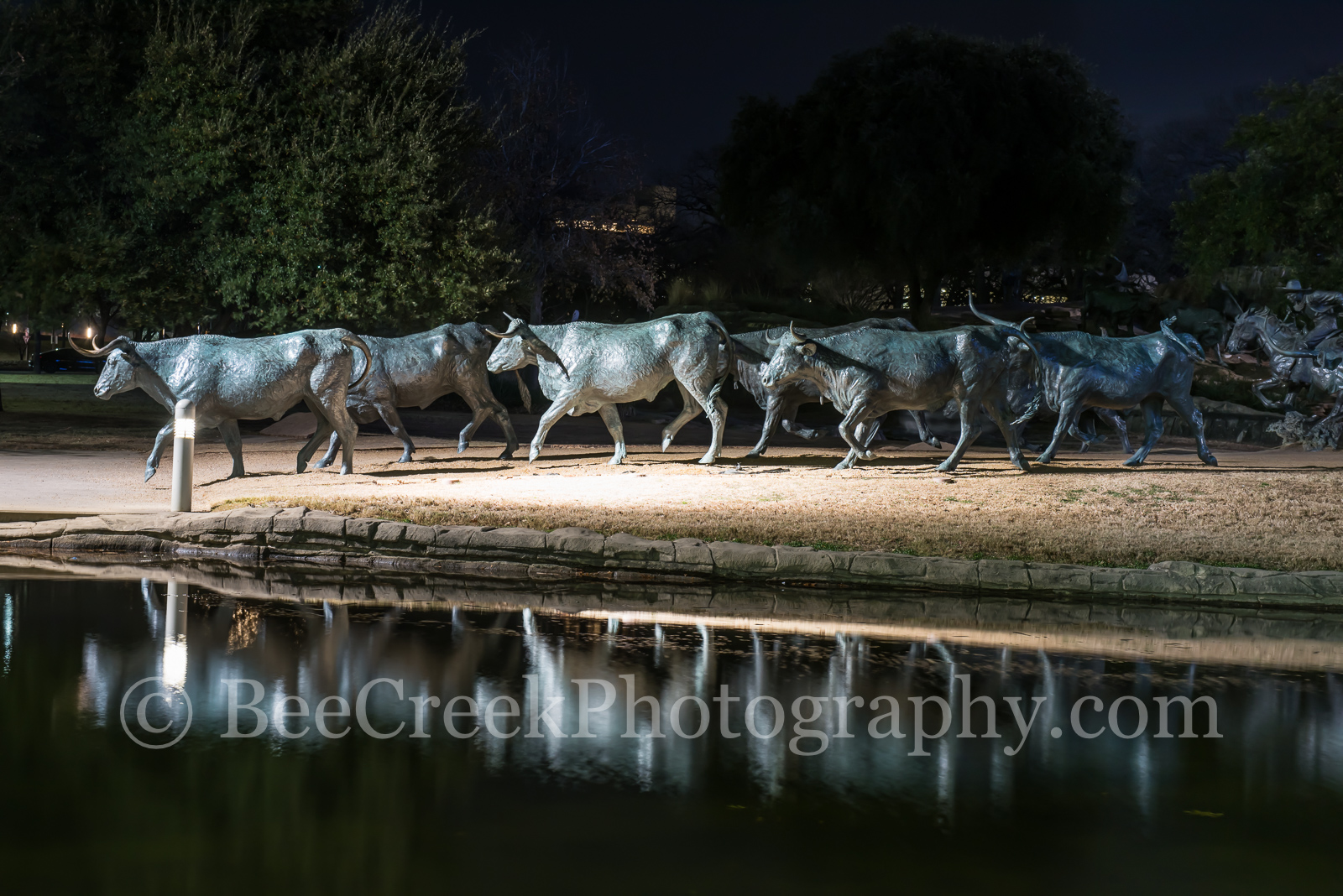 Dallas Pioneer Park Longhorns - We like the way these bronze statues of longhorns and trail riders reflected back at the Pioneer...