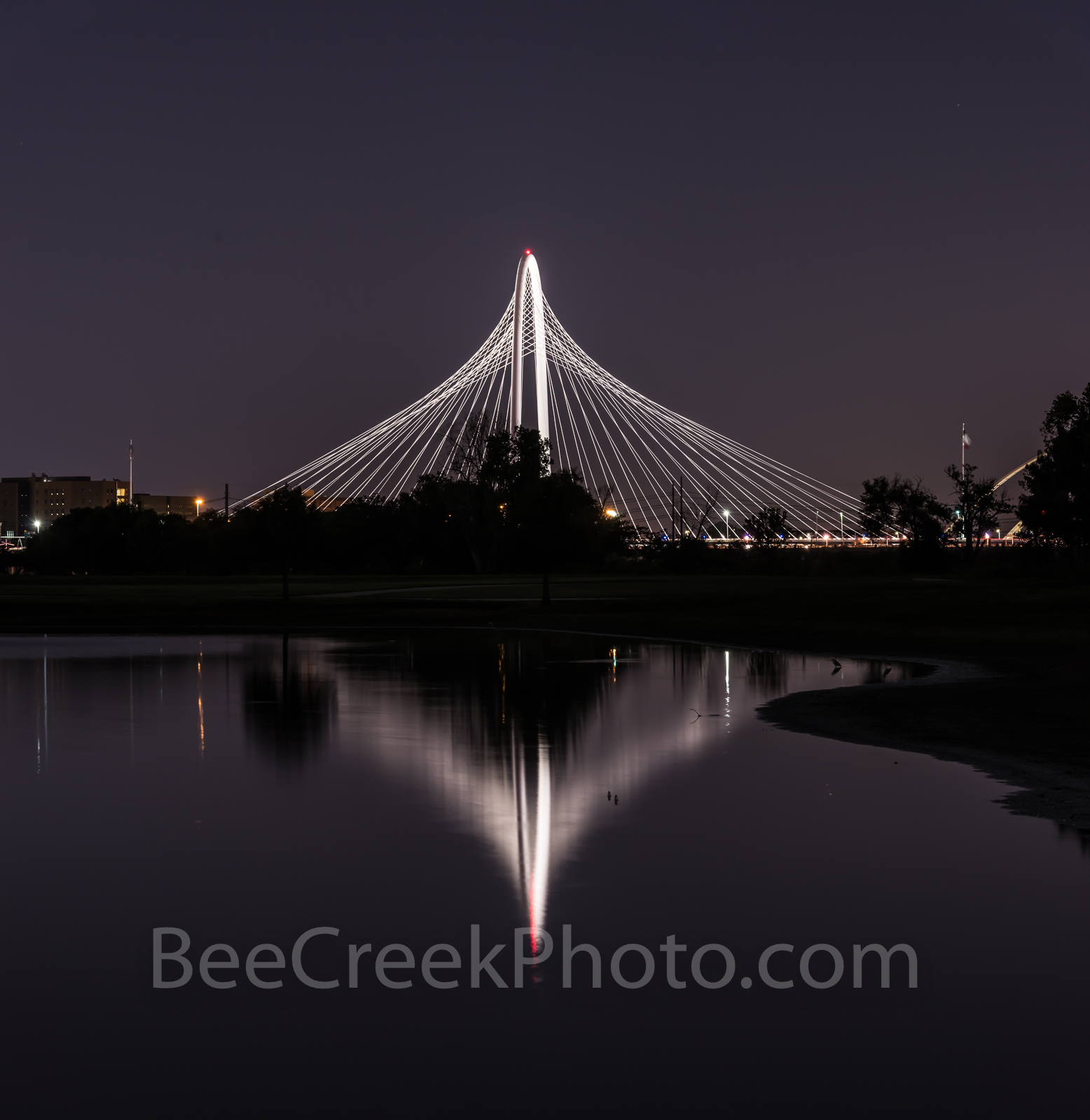 Dallas, reflection, Margaret Hunt Hill Bridge, pano, panorama, reflects water, Trinity river, night, dark, historical, rail, railroad, fortune 500, high tech, , photo