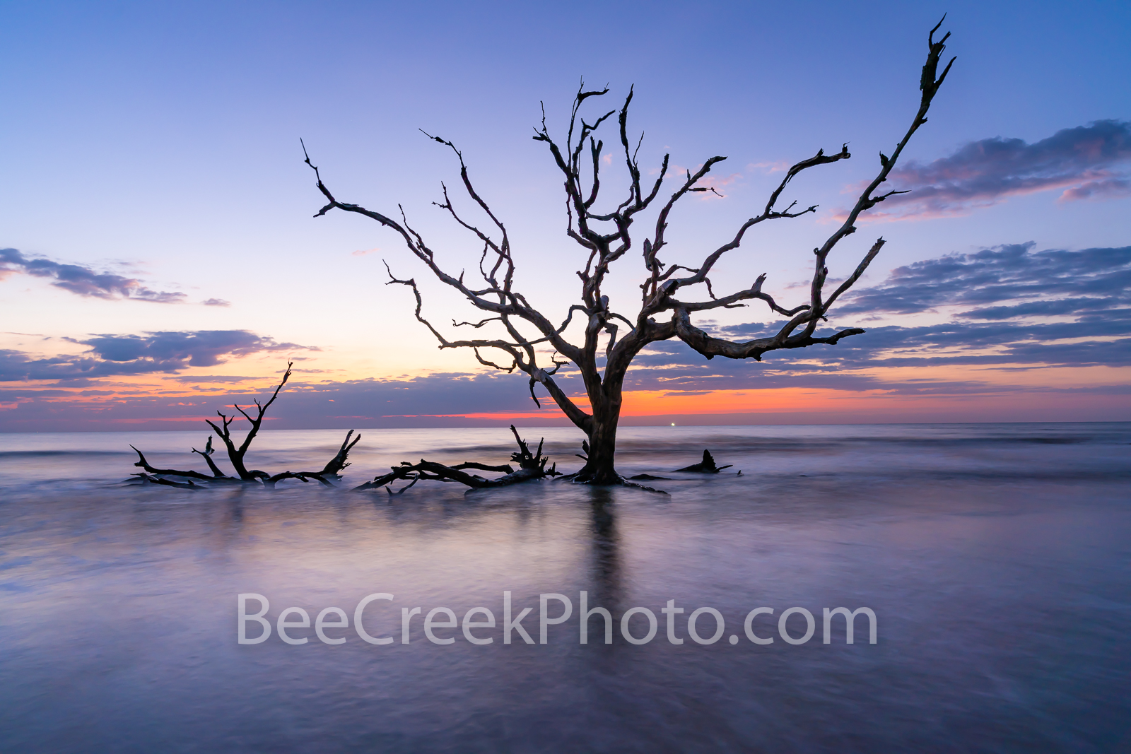 Driftwood beach, driftwood, jekyll island, beach, fiery, red, orange, pink, dawn, sunrise, silouette, deadwood, tree, tide, surf, firey, color, tide rolled in, barrier island, alantic coast, georgia, ocean, golden isles
