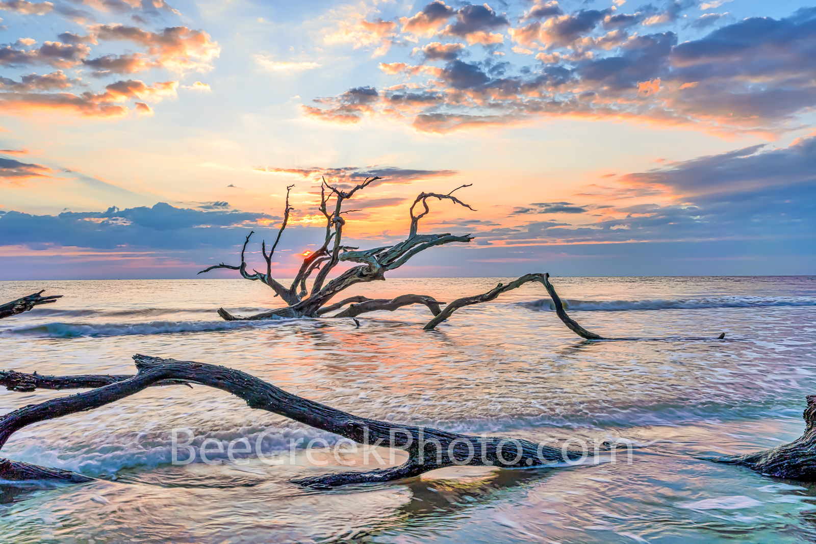 Driftwood in the Surf - Jekyll island sunrise at driftwood beach as the tide comes in surround this dead tree and the other pieces...