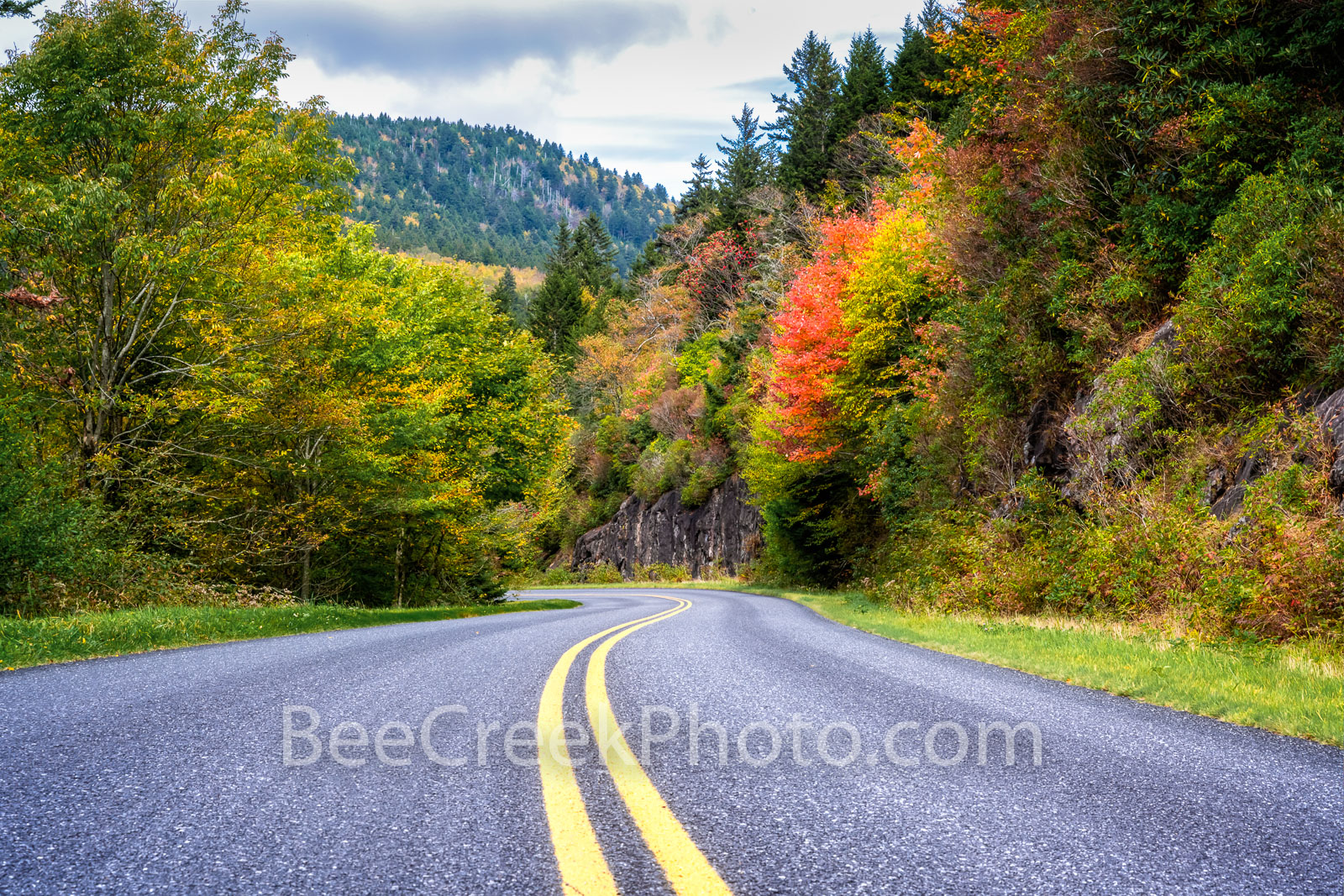 Fall Along the Blue Ridge Parkway - We captured this scenic road from the Blue Ridge Parkway just as the fall colors were popping...