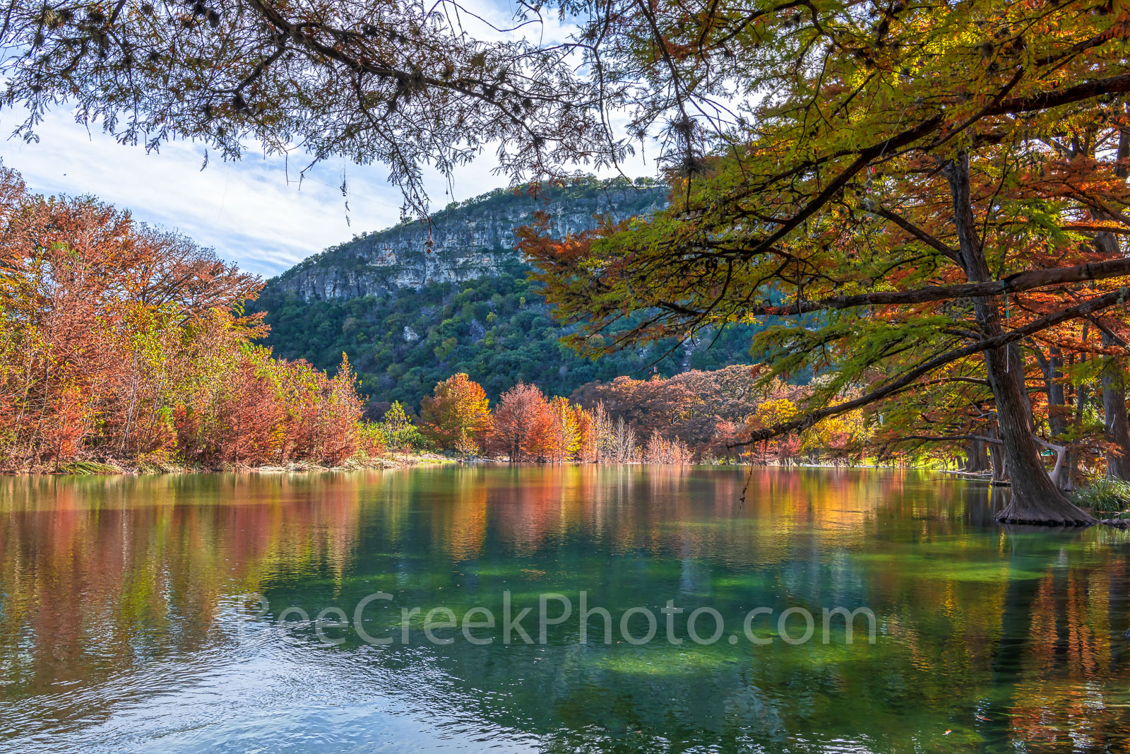 Fall, Foliage, Garner State Park, Texas Hill country, texas landscape, fall, bald cypress branches, cypress tree, branches, maples, fall, autumn, frio river, old baldy, colors, Hill country, landscape, photo