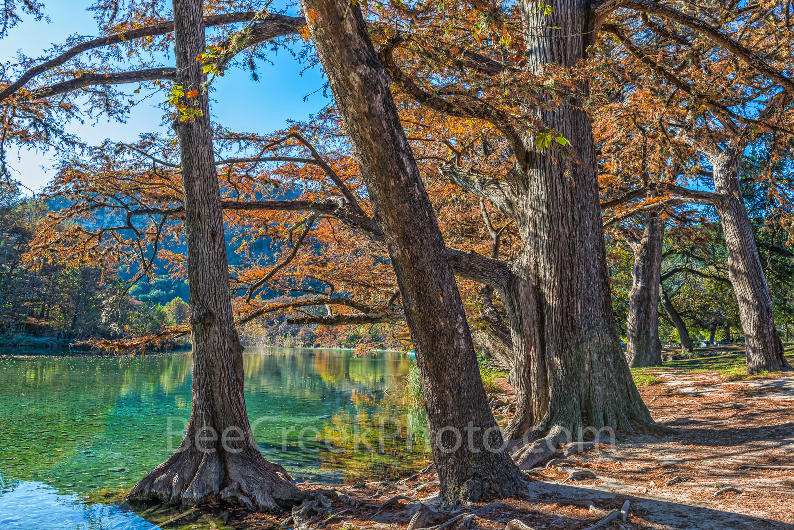 Garner State Park, Texas,, landscape, landscapes, Texas landscape, fall, frio river, rural landscape, blue water, clear water, blue green waters, fall cypress trees, colorful,, photo