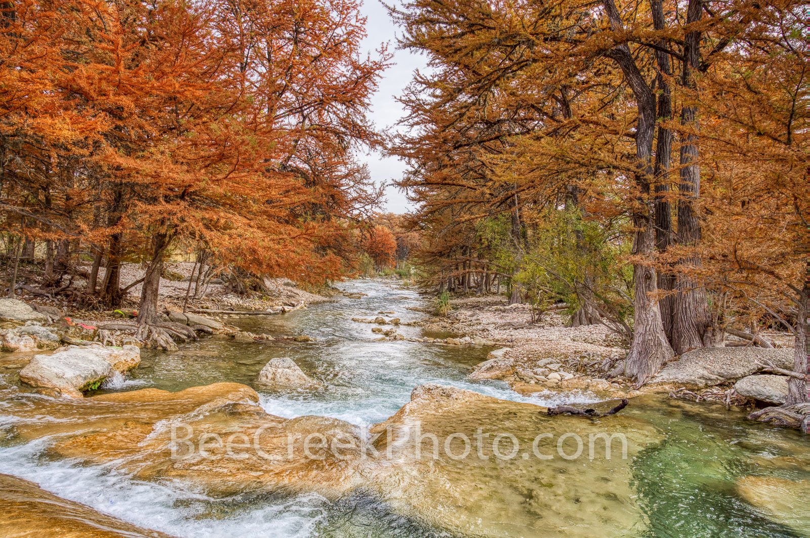 fall, river, frio river, rocky, downstream, texas hill country, hill country, autumn, emerald water, flowing, cypress, bald cypress trees, orange, rusty red, fall scenery, autumn scenery, scenic, path, photo