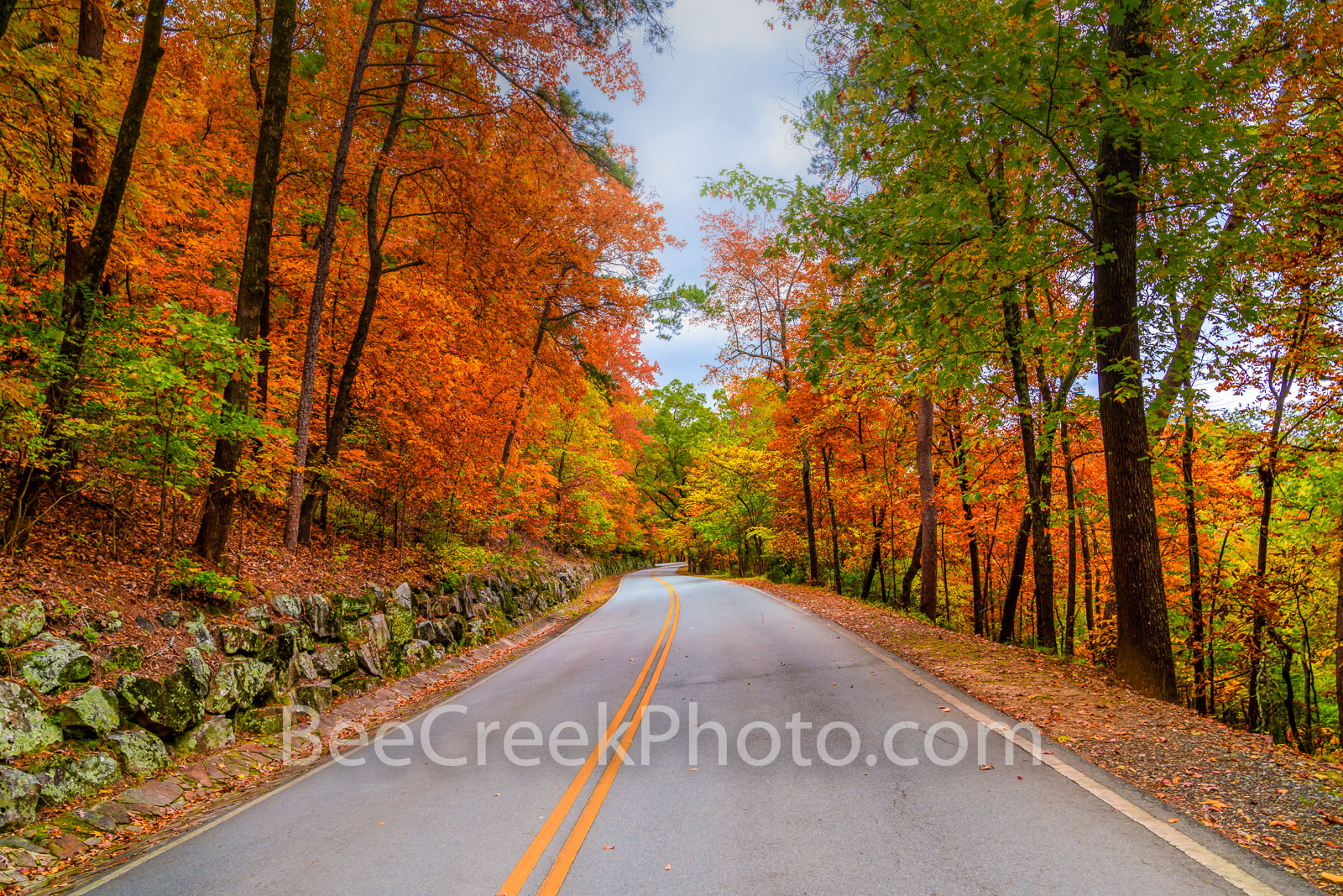 Fall Roadside Colors  - We came looking for scenic autumn foliage this fall to see some color and we hit the jackpot in Arkansas...