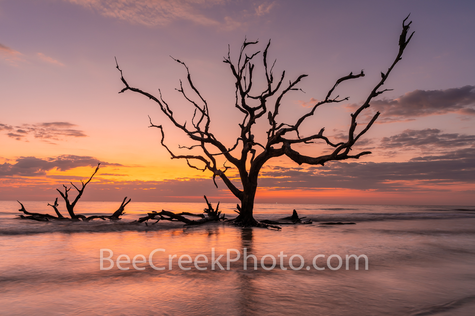 Driftwood beach, driftwood, jekyll island, beach, fiery, red, orange, pink, dawn, sunrise, silouette, deadwood, tree, tide, surf, firey, color, tide rolled in, barrier island, alantic coast, georgia, , photo