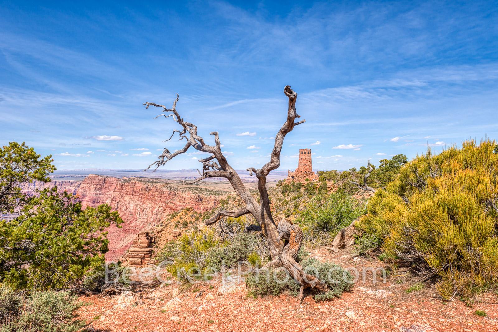 Grand Canyon, Grand Canyons, Arizona, Grand Canyon National Park, watchtower, pictures of grand canyons, image of grand canyons, desert, desert southwest, arizona desert, arizona scenery, , photo