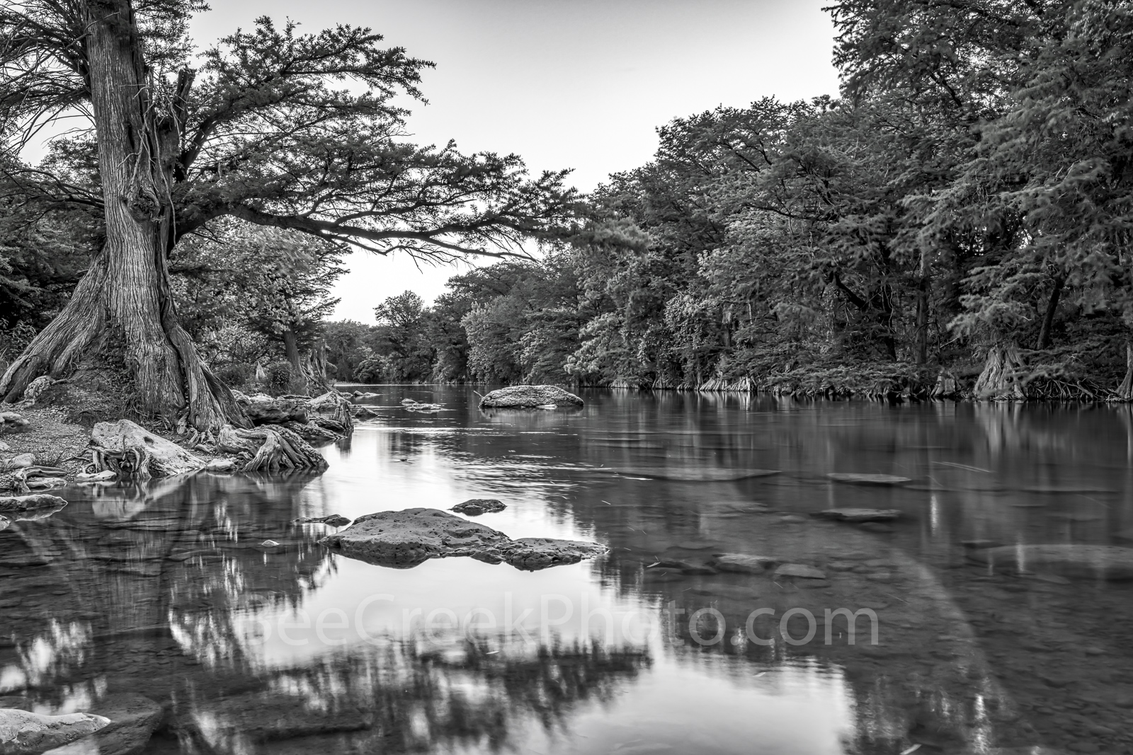 Guadalupe river, black and white, BW, Guadalupe State Park, cypress trees, rocks, flood, river rocks, water, river, texas hill country, texas, landscape, texas landscape,, photo