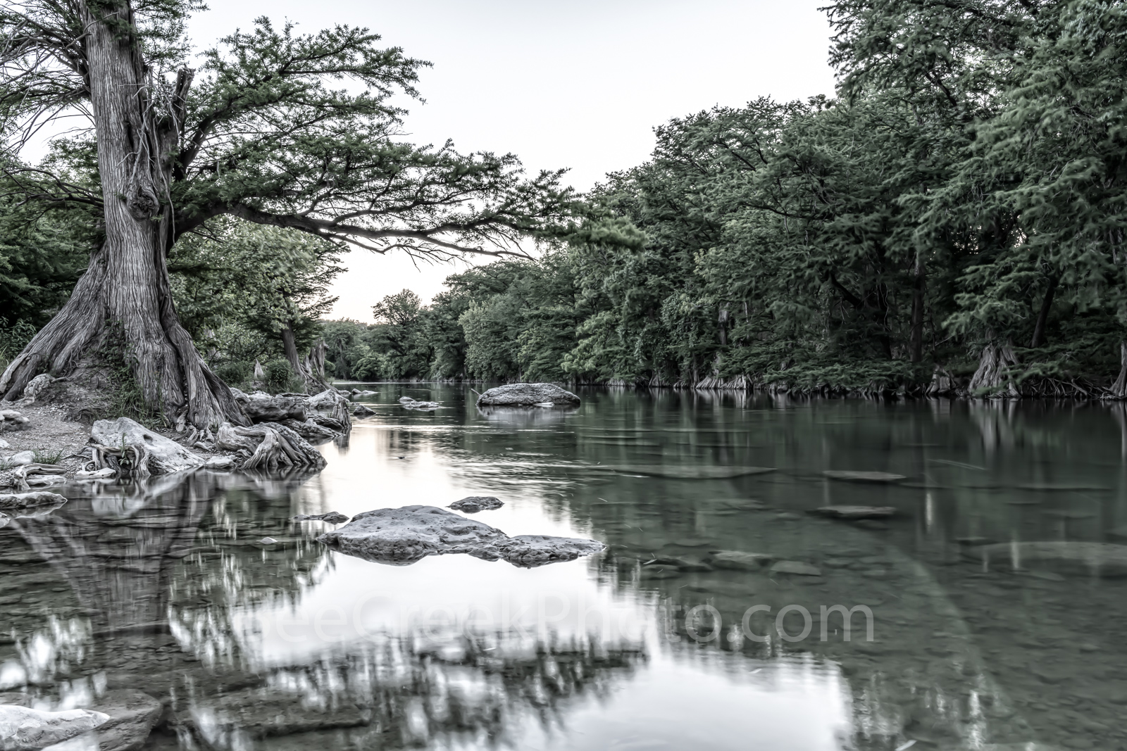 Guadalupe river, black and white, BW, monocromatic, Guadalupe State Park, cypress trees, rocks, flood, river rocks, water, river, texas hill country, texas,, photo