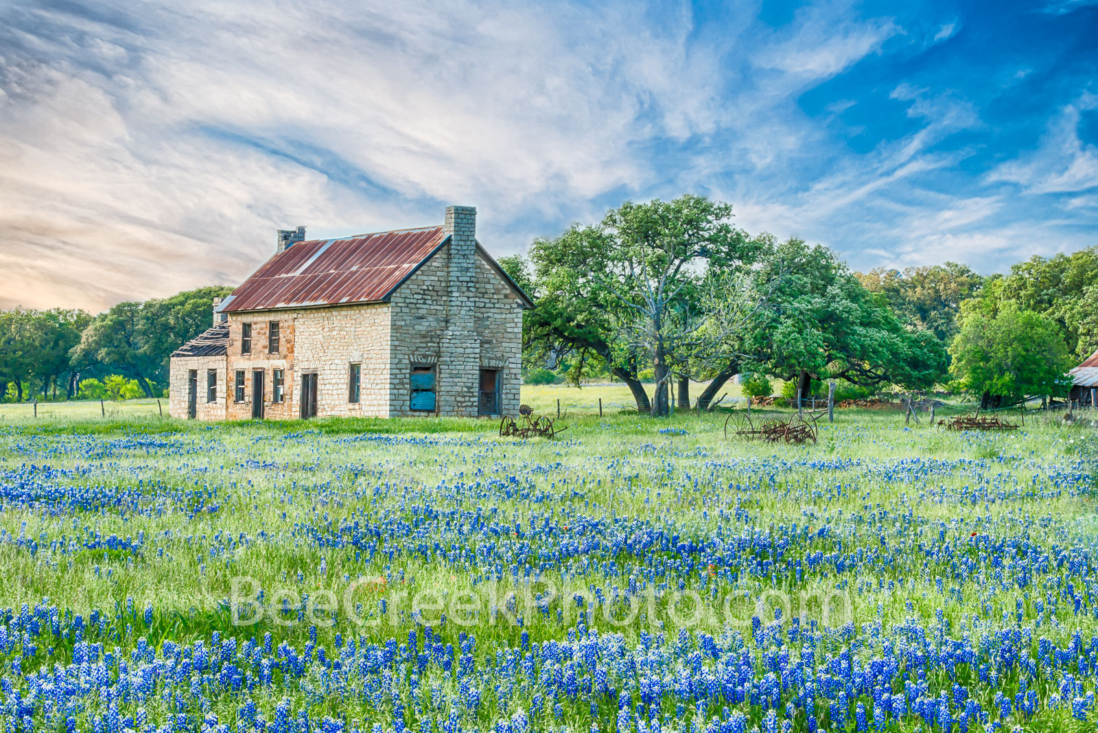 hill country bluebonnets, blue bonnets, bluebonnet, bluebonnets, dusk, bluebonnet house, farmhouse, flora, images of Texas, landscape, landscapes, scenic, spring, spring flowers, springtine, sunset, t, photo