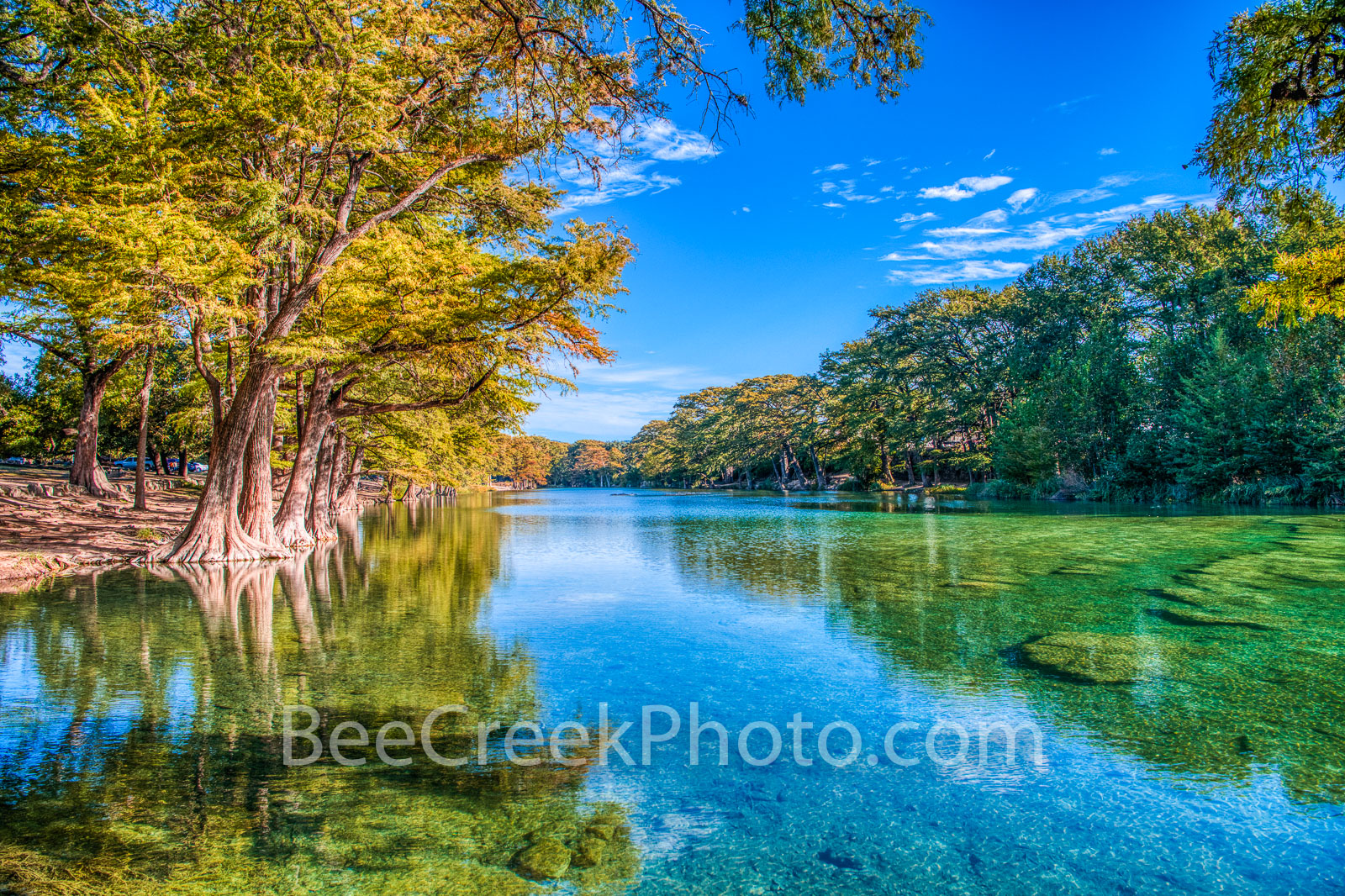 hill country, texas hill country, emeral green waters, blue green, frio river, bald cypress, cypress, reflections, clear water, beauty, golden, Garner state park, garner, blue sky, whispy clouds, , photo