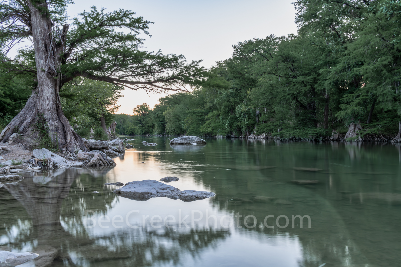 Guadalupe river, hill county, Guadalupe State Park, cypress trees, rocks, flood, river rocks, water, river, texas hill country, photo
